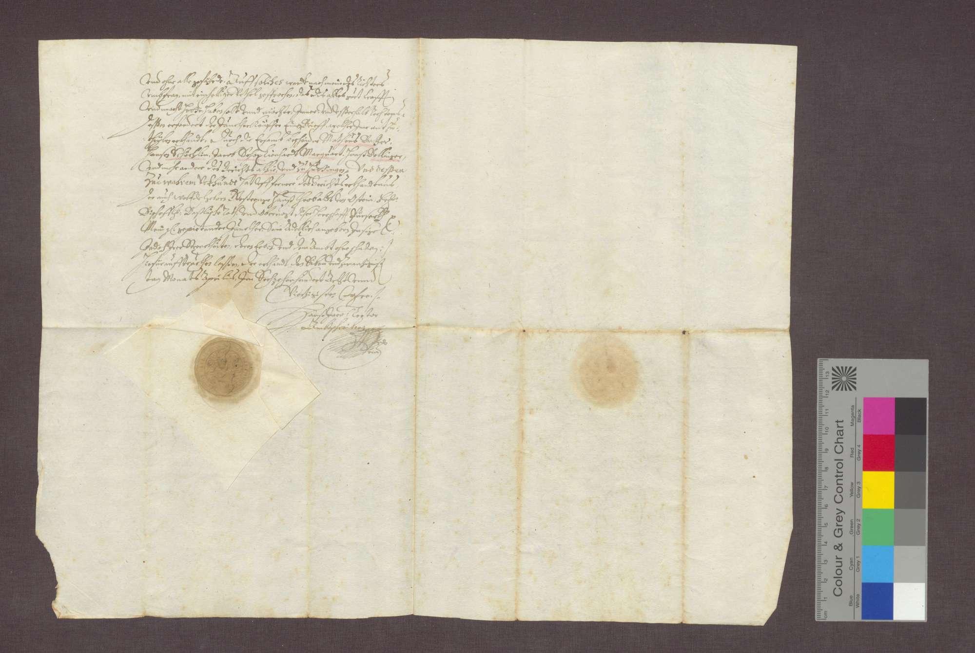 Jakob Müller zu Huttingen verkauft eine Wiese an Hans Hartmann Schenk von Castell., Bild 2