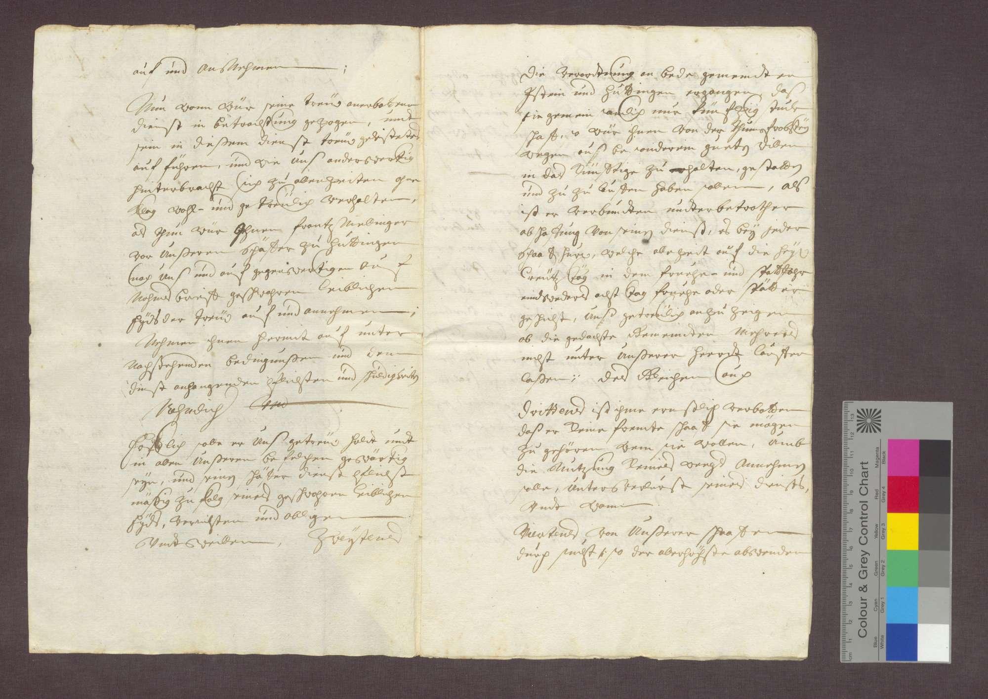 Franz Nellinger reversiert über seine Bestallung als Schäfer des Domstifts Basel in Huttingen., Bild 2