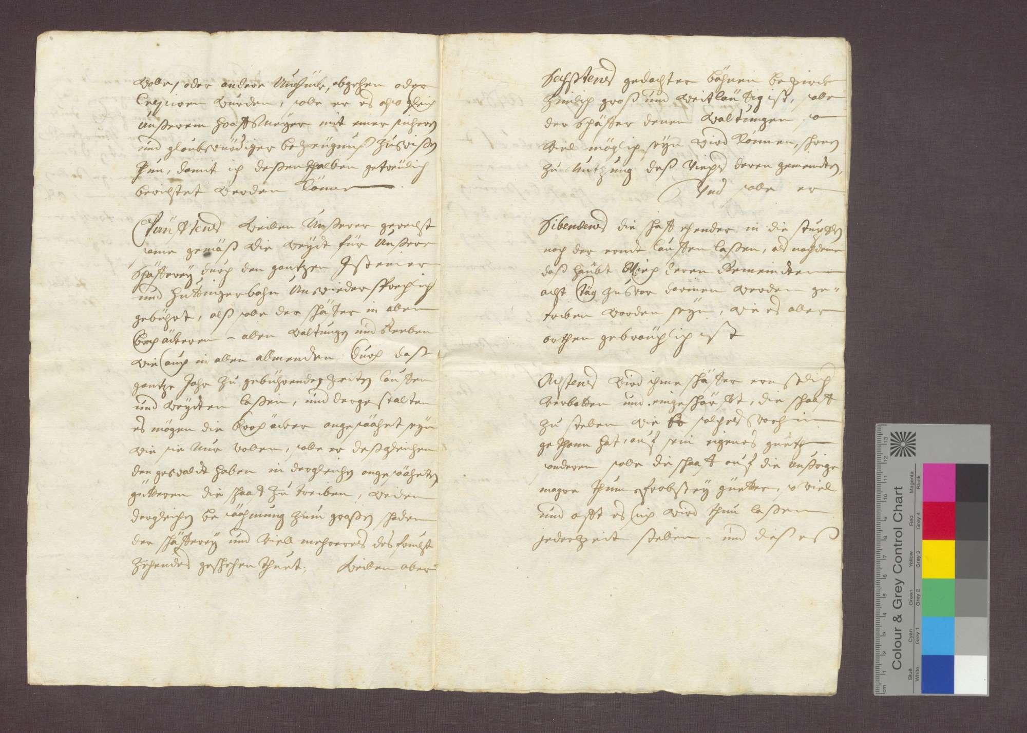 Franz Nellinger reversiert über seine Bestallung als Schäfer des Domstifts Basel in Huttingen., Bild 3