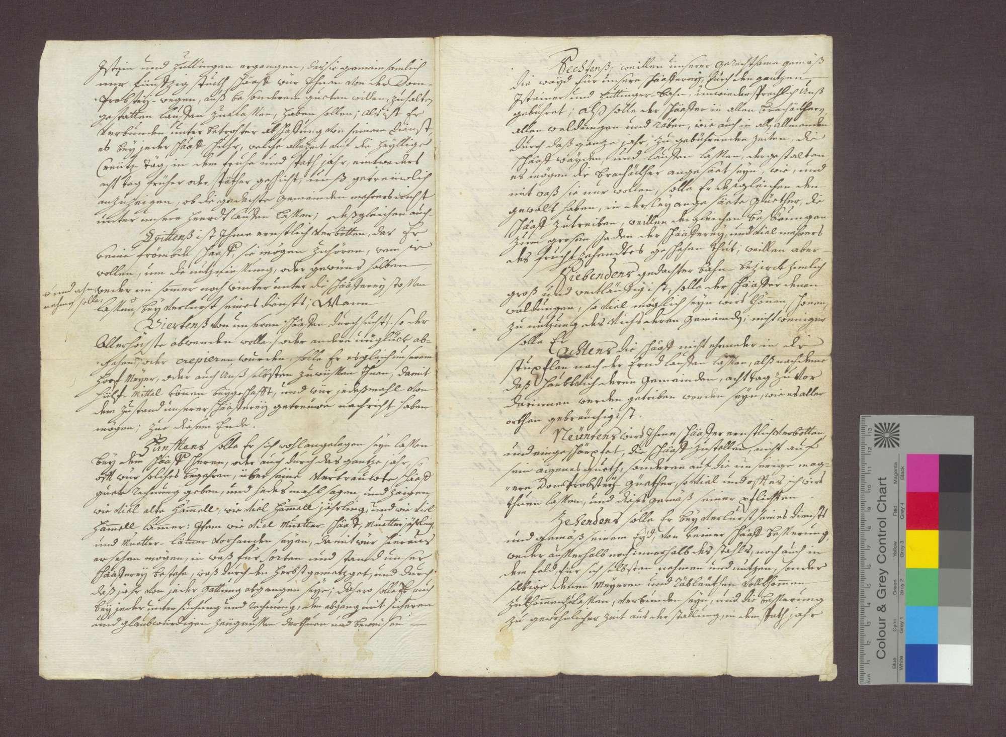 Bestallung des Josef Thüring als Schäfer des Basler Domkapitels in Huttingen., Bild 2