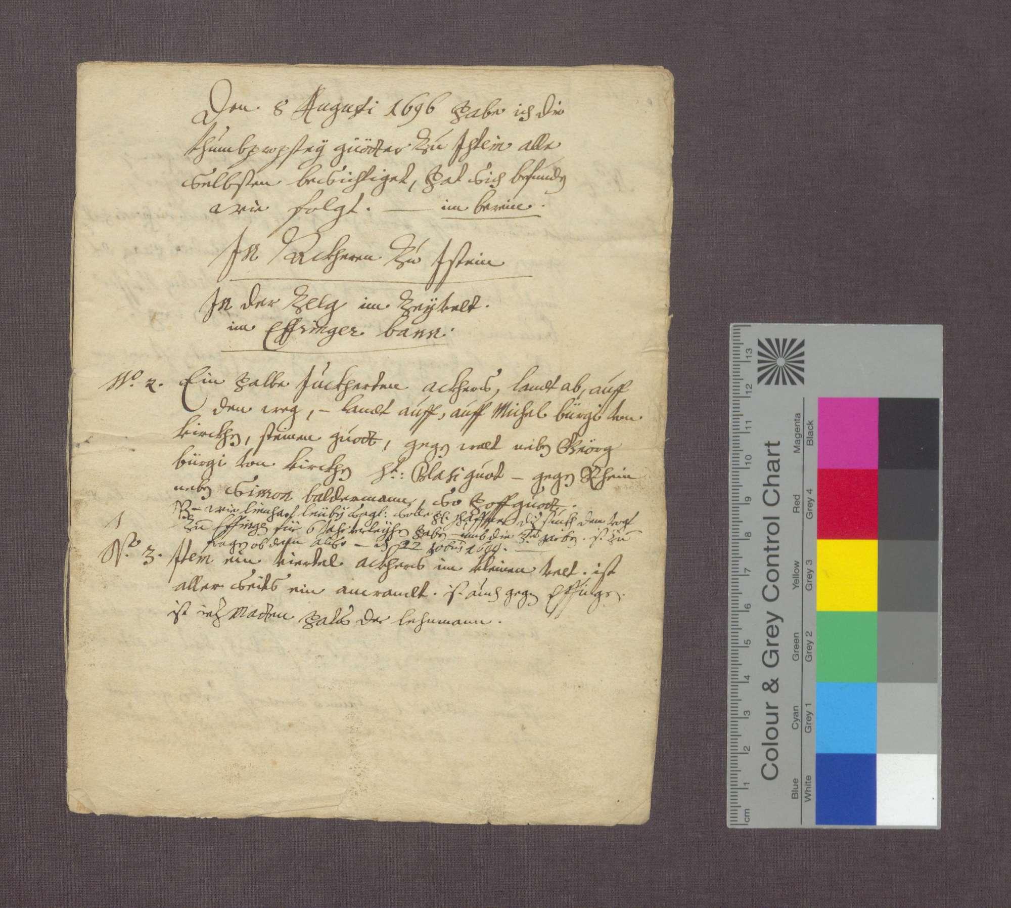 Berain über die Güter der Basler Dompropstei in Istein., Bild 1
