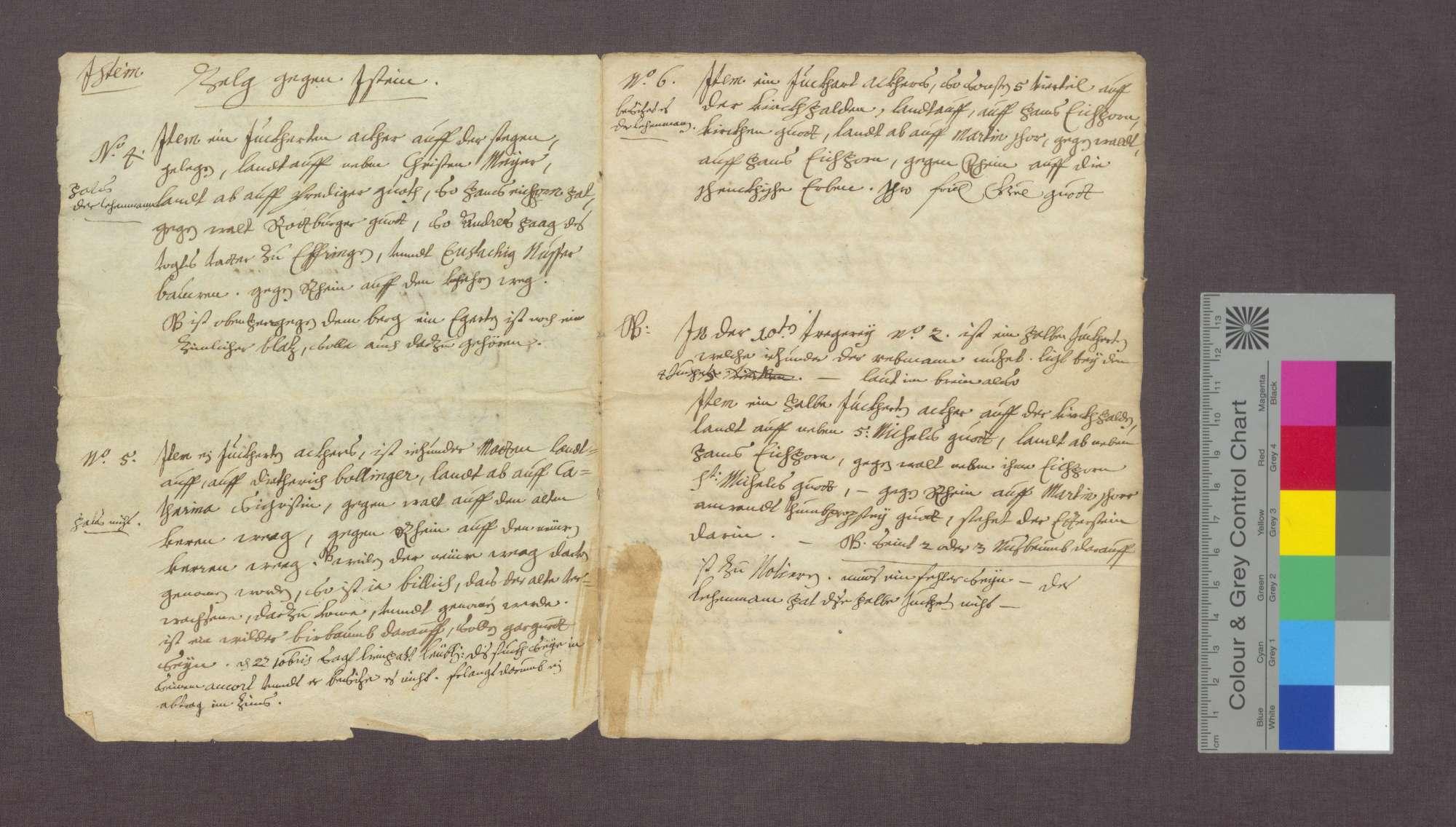 Berain über die Güter der Basler Dompropstei in Istein., Bild 2