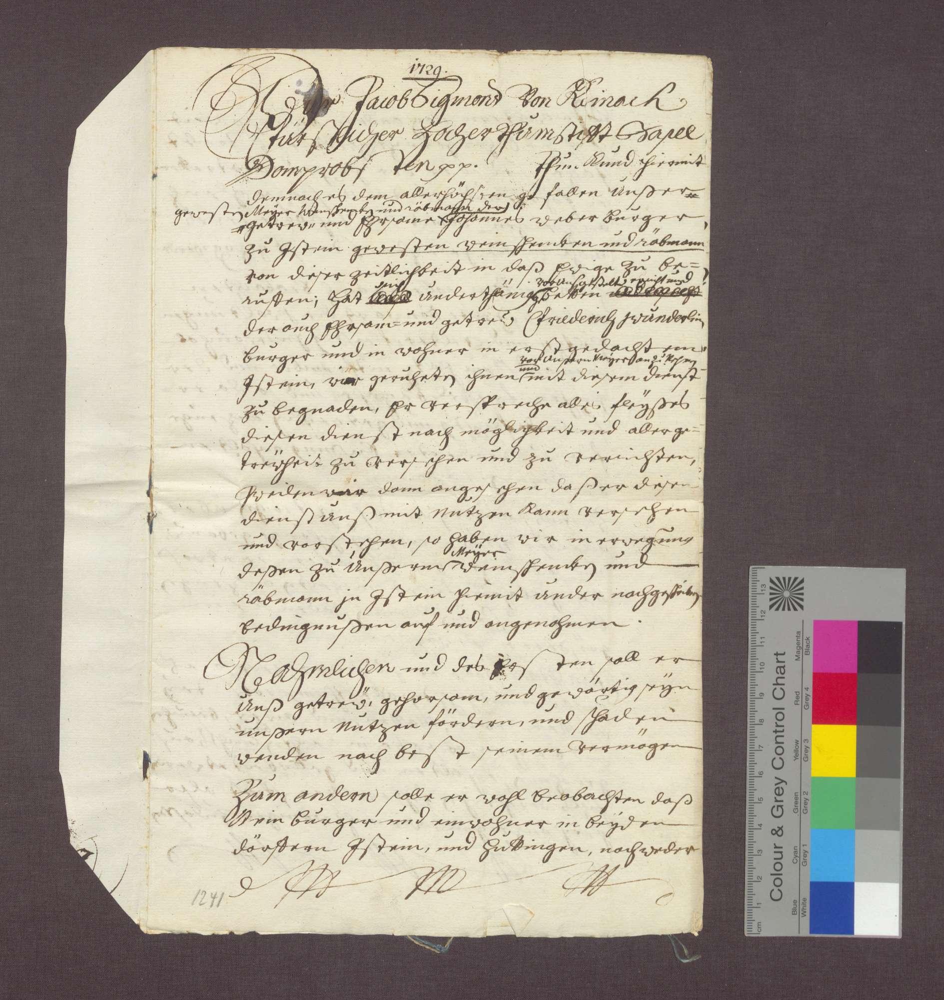 Bestallung des Friedrich Wunderlin als Meier des Basler Domkapitels in Istein., Bild 1