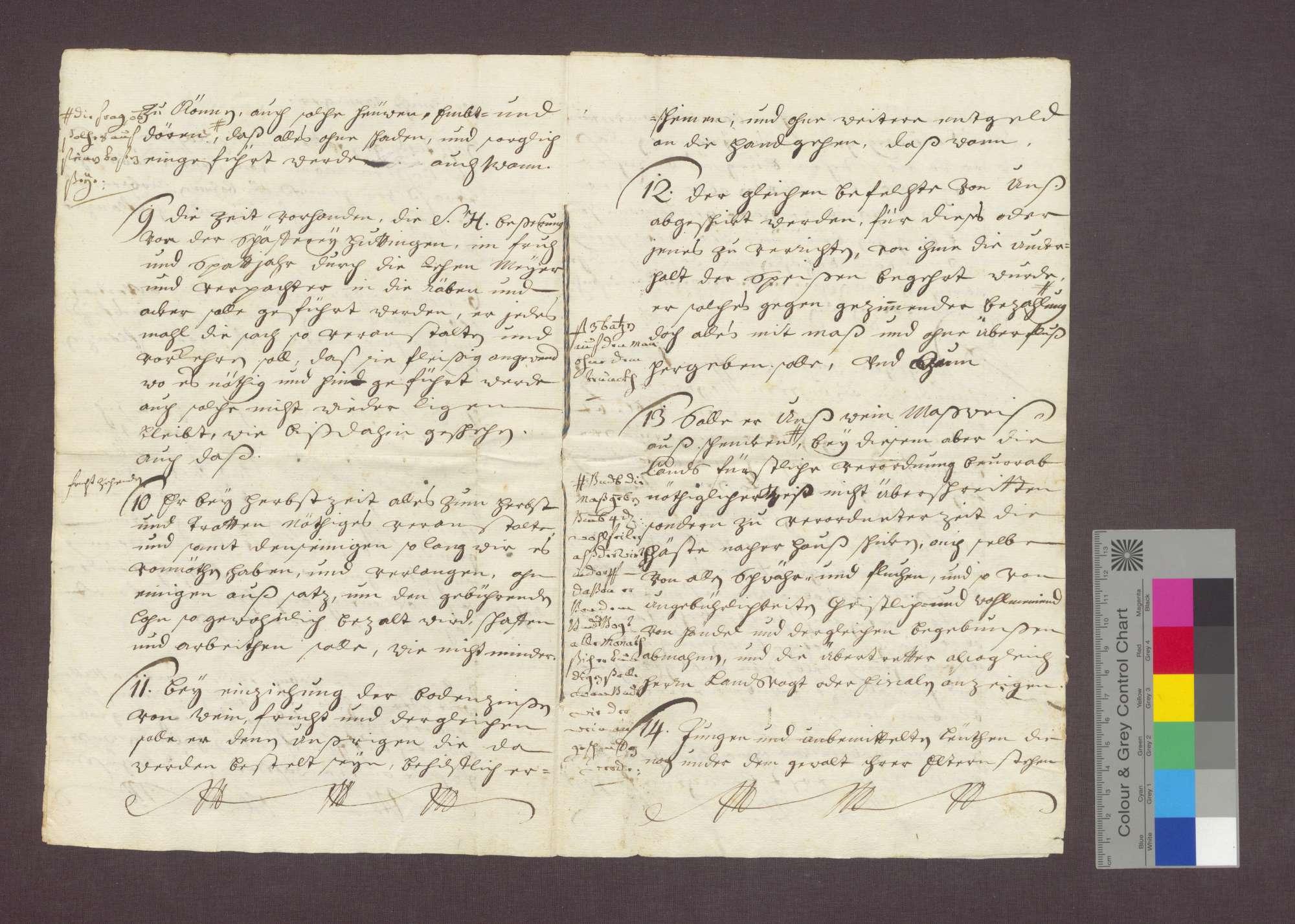 Bestallung des Friedrich Wunderlin als Meier des Basler Domkapitels in Istein., Bild 3