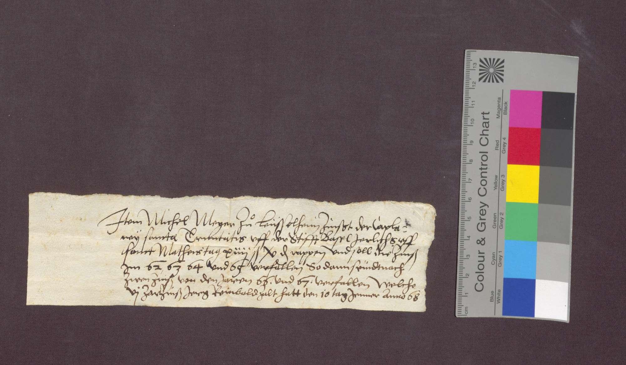 Gültverschreibung des Gilg Meyger zu Leiselheim gegenüber dem Dreifaltigkeits-Altar am Basler Domstift., Bild 1