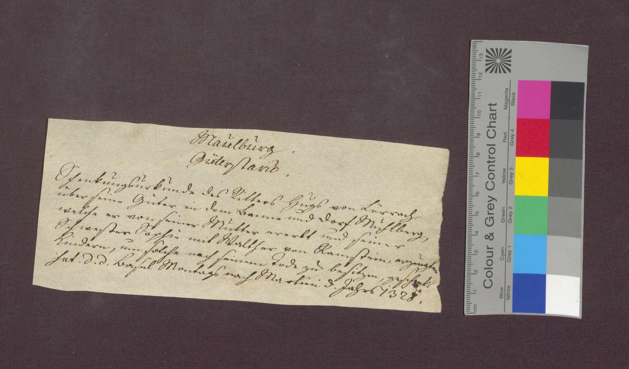 Der Edelknecht Hug von Lörrach schenkt all sein Gut und Geld in Maulburg an die Kinder seiner Schwester Sophie von Ramstein., Bild 1