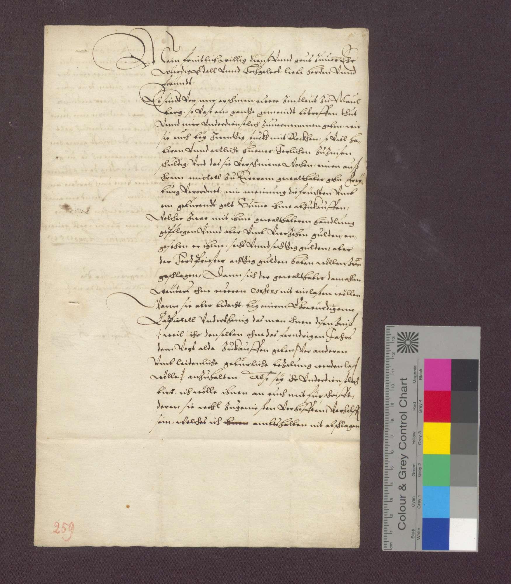 Einkünfte des Domstifts Basel zu Maulburg., Bild 1