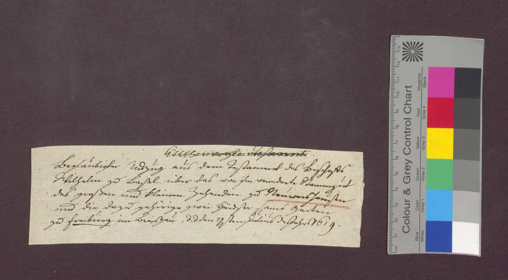 Auszug aus dem Testament des Basler Bischofs Wilhelm Jakob Rinck von Baldenstein, betreffend das von diesem verordnete Stammgut des großen und kleinen Zehnten zu Neuershausen und zweier Häuser zu Freiburg im Breisgau., Bild 1
