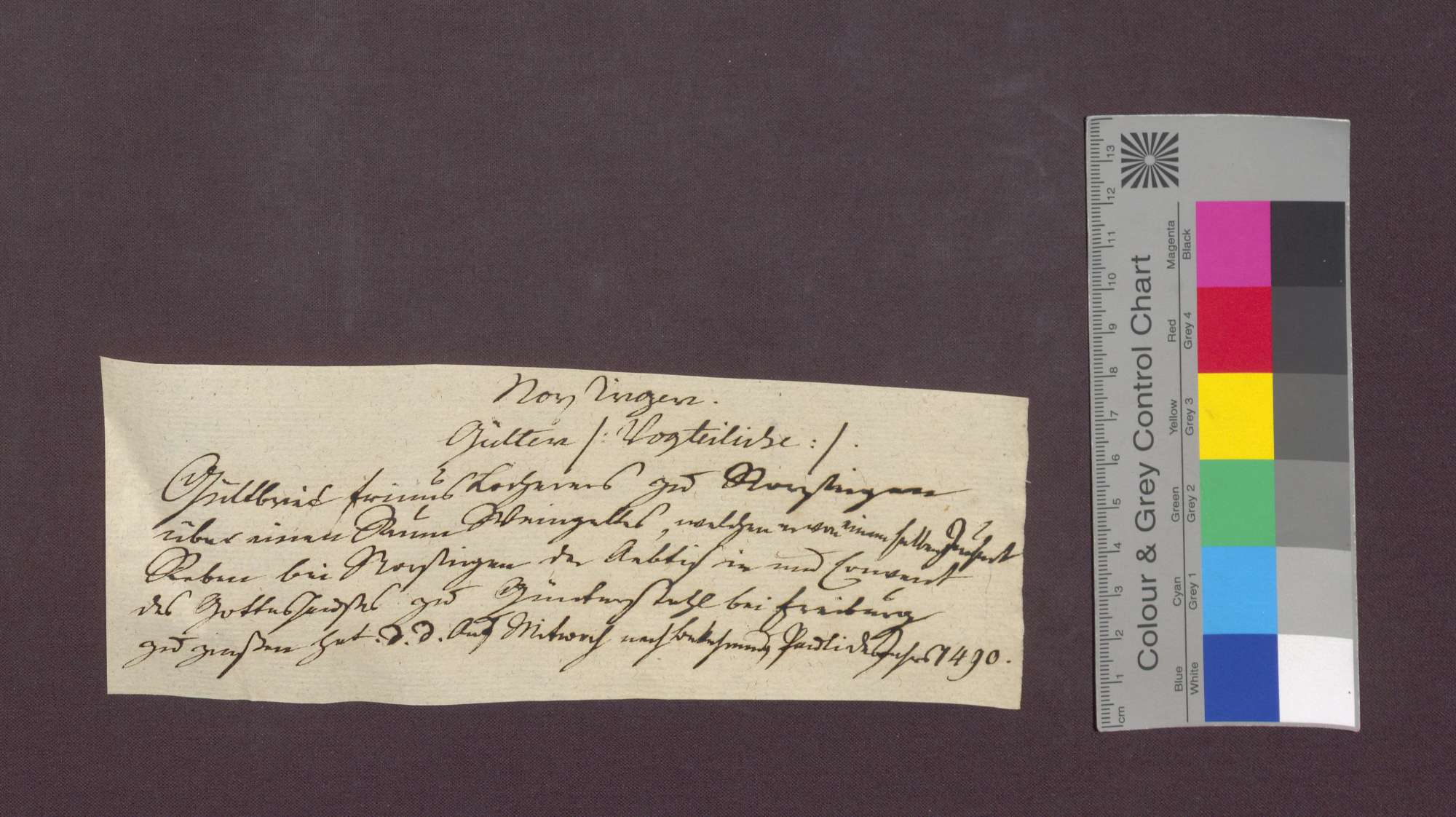Gültverschreibung des Frinus Locher von Norsingen gegenüber dem Kloster Günterstal., Bild 1