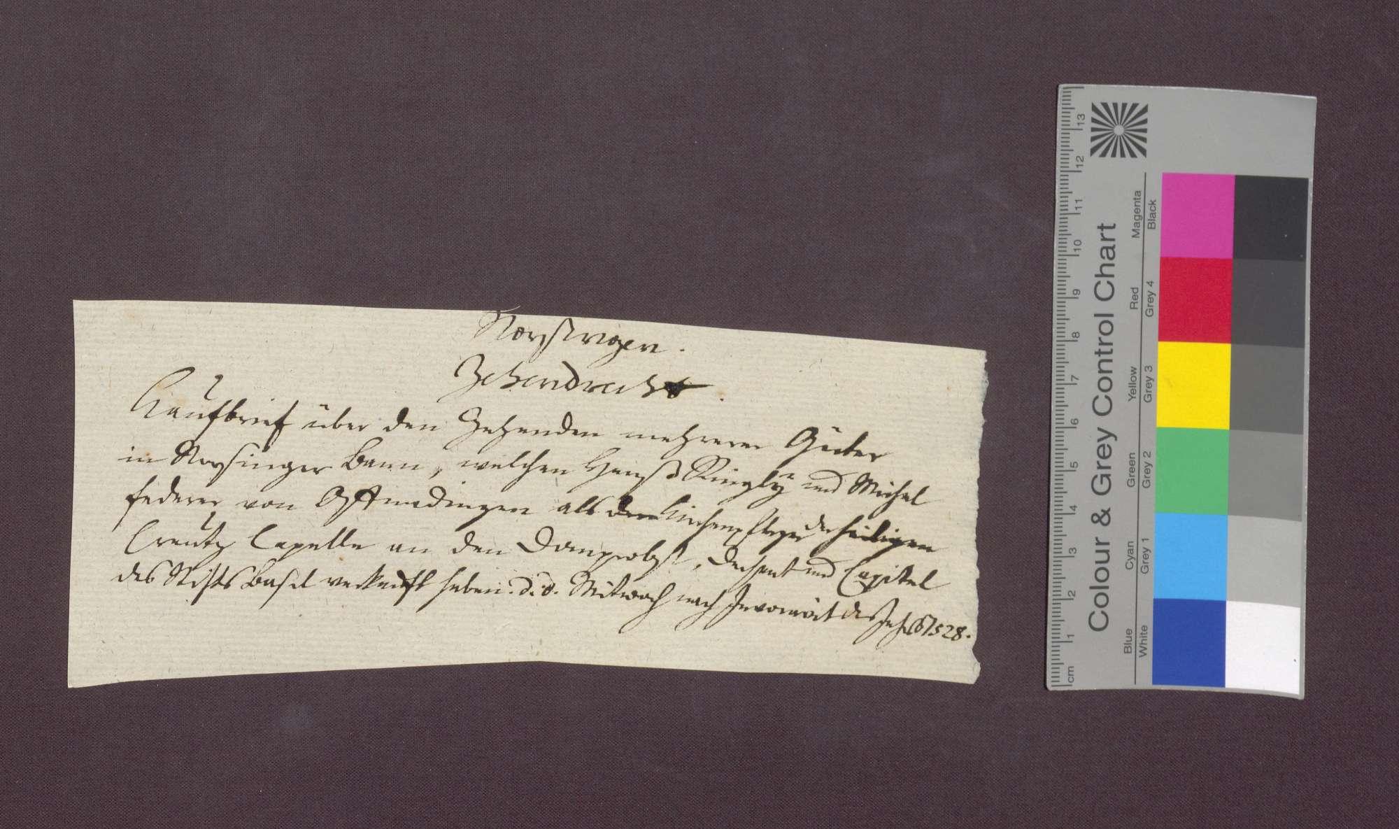 Die Kirchenpfleger zu Offnadingen verkaufen einen Zehnten in Norsinger Bann an das Basler Domkapitel., Bild 1