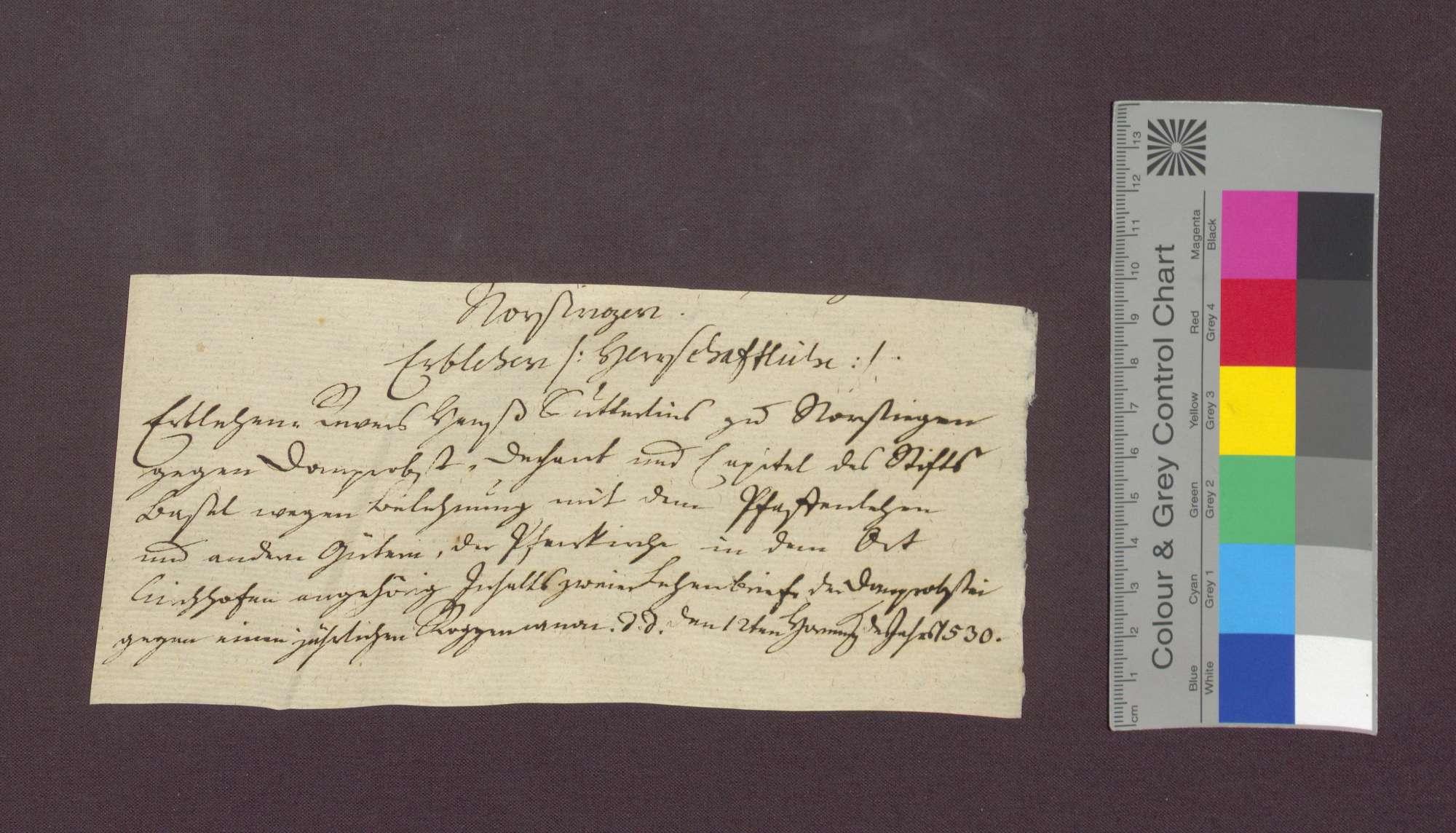 Lehnbrief des Basler Domkapitels für Hans Suterlin, Vogt zu Norsingen., Bild 1