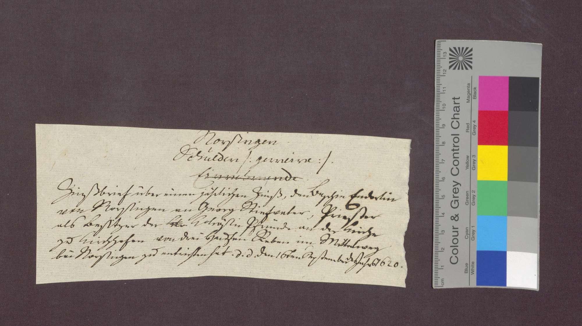 Schuldverschreibung des Sebastian Enderlin von Norsingen gegenüber der Colrosen-Pfründe in Kirchhofen., Bild 1