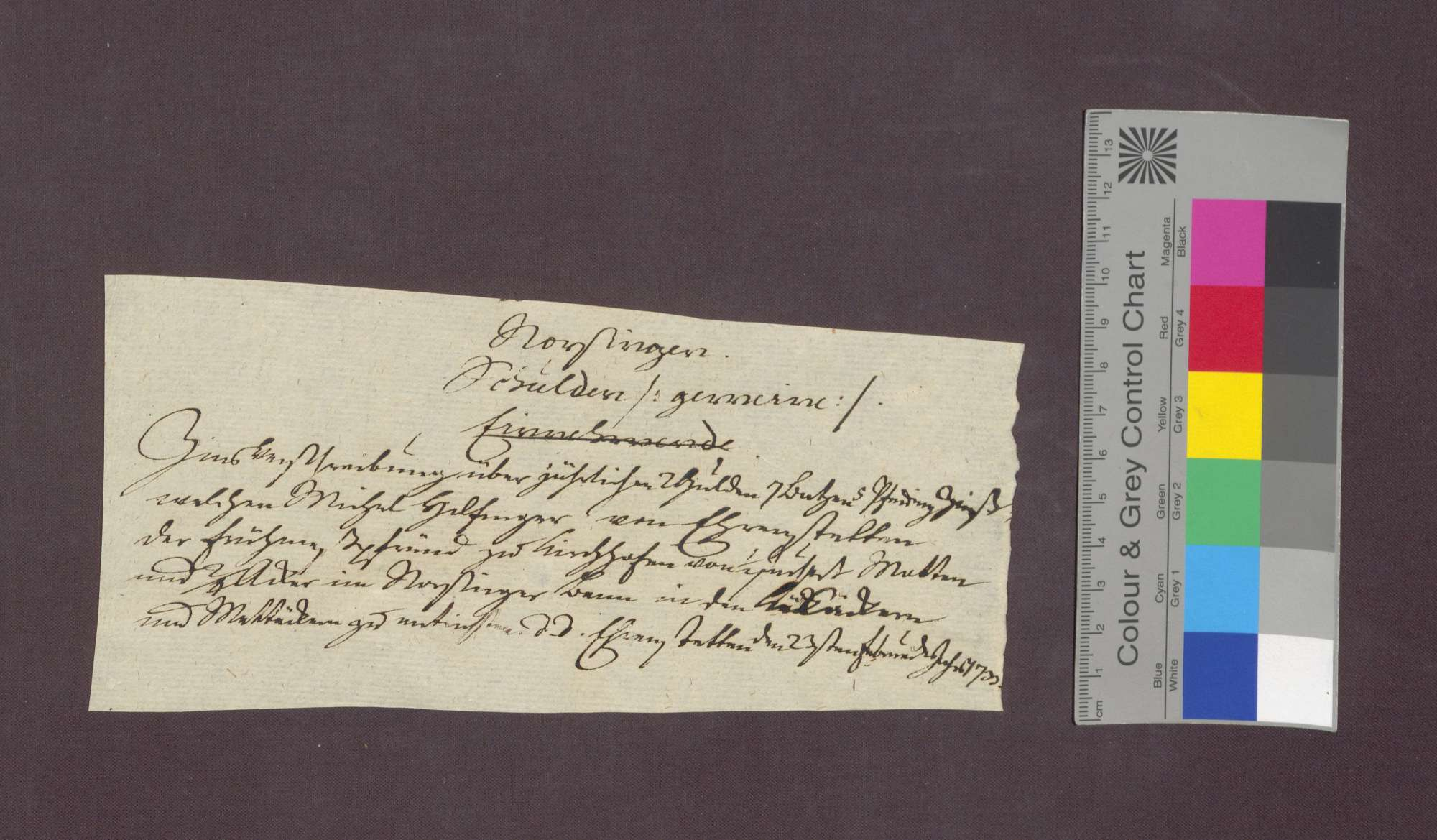 Schuldverschreibung des Michel Hilfinger von Ehrenstetten gegenüber der Frühmesse in Kirchhofen wegen Gütern in Norsinger Bann., Bild 1