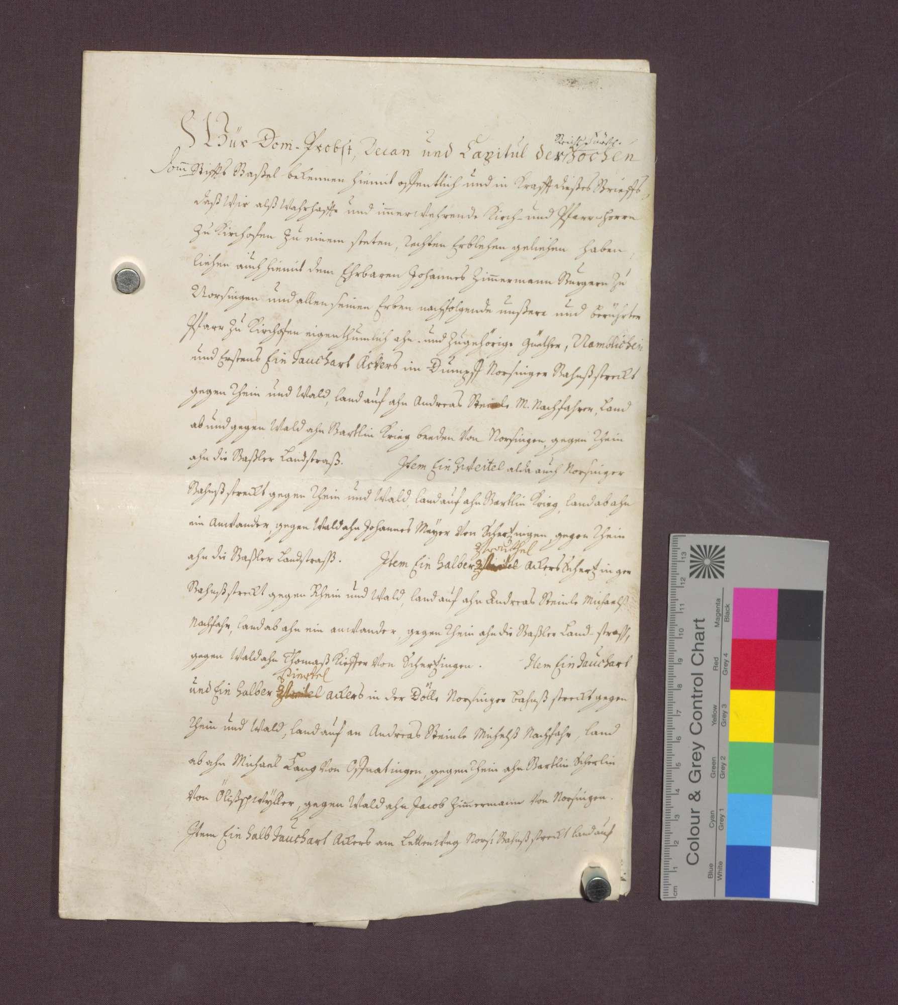 Lehnbrief des Basler Domkapitels für Johannes Zimmermann von Norsingen., Bild 2
