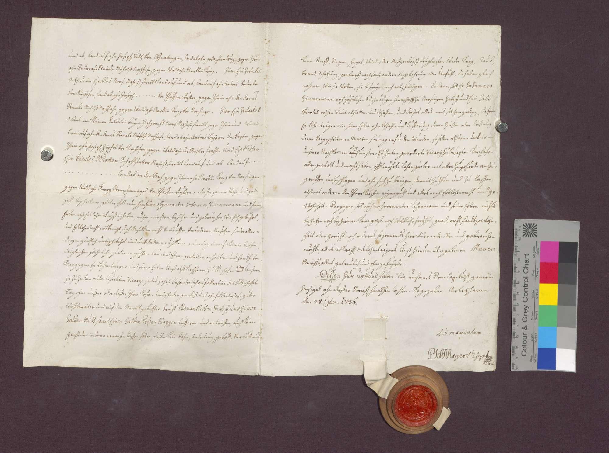 Lehnbrief des Basler Domkapitels für Johannes Zimmermann von Norsingen., Bild 3