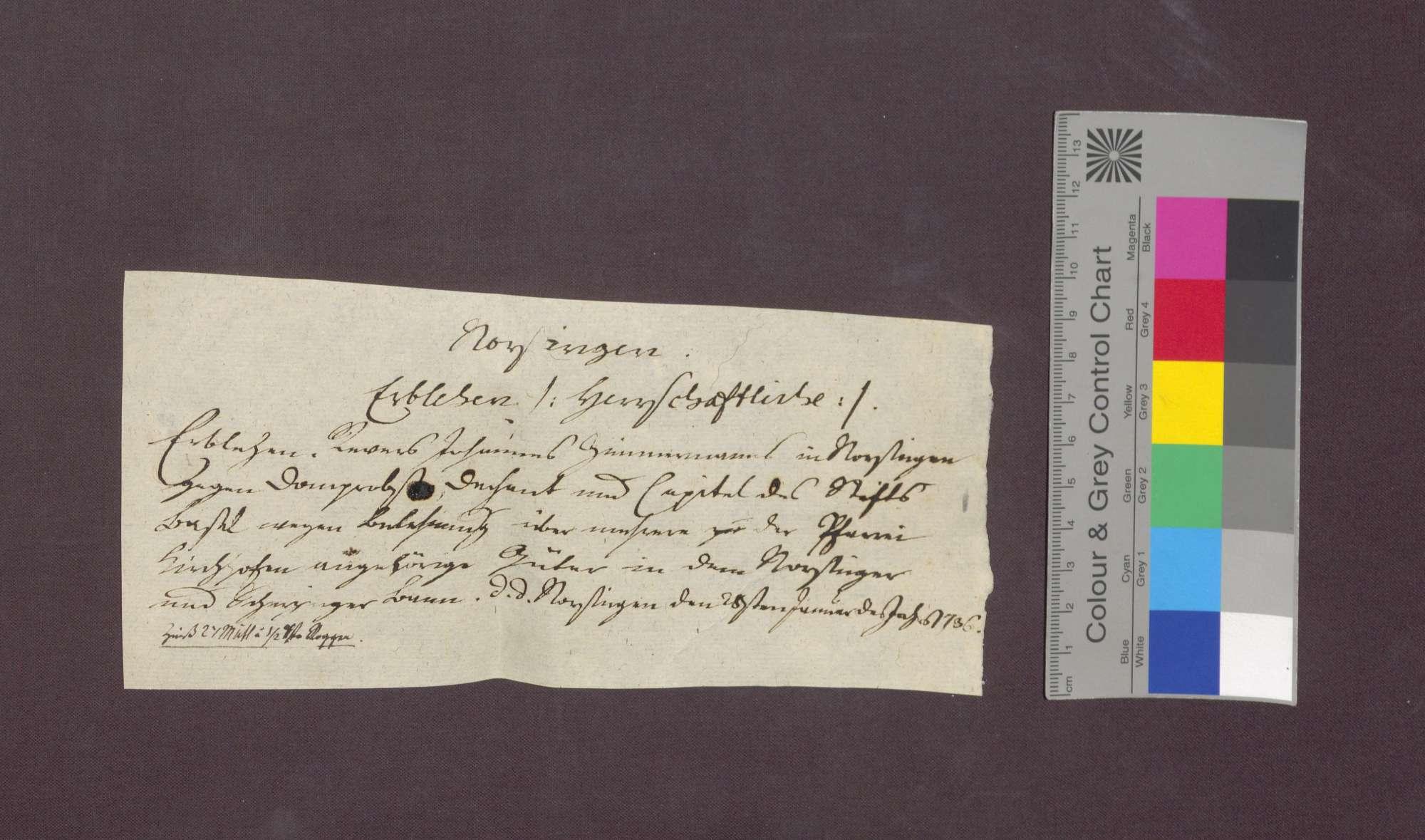 Revers des Johannes Zimmermann von Norsingen gegenüber dem Basler Domkapitel., Bild 1