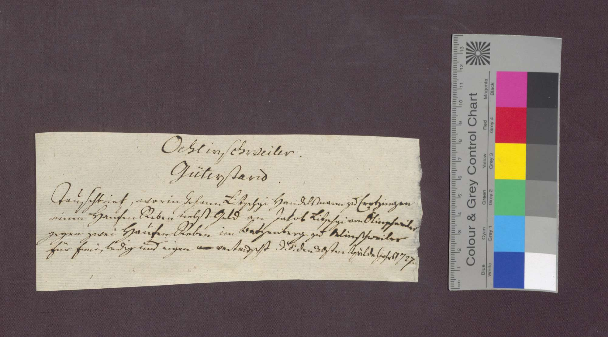 Jakob Litschgi zu Öhlinsweiler und Johann Litschgi von Krozingen tauschen Reben am Betzenberg., Bild 1