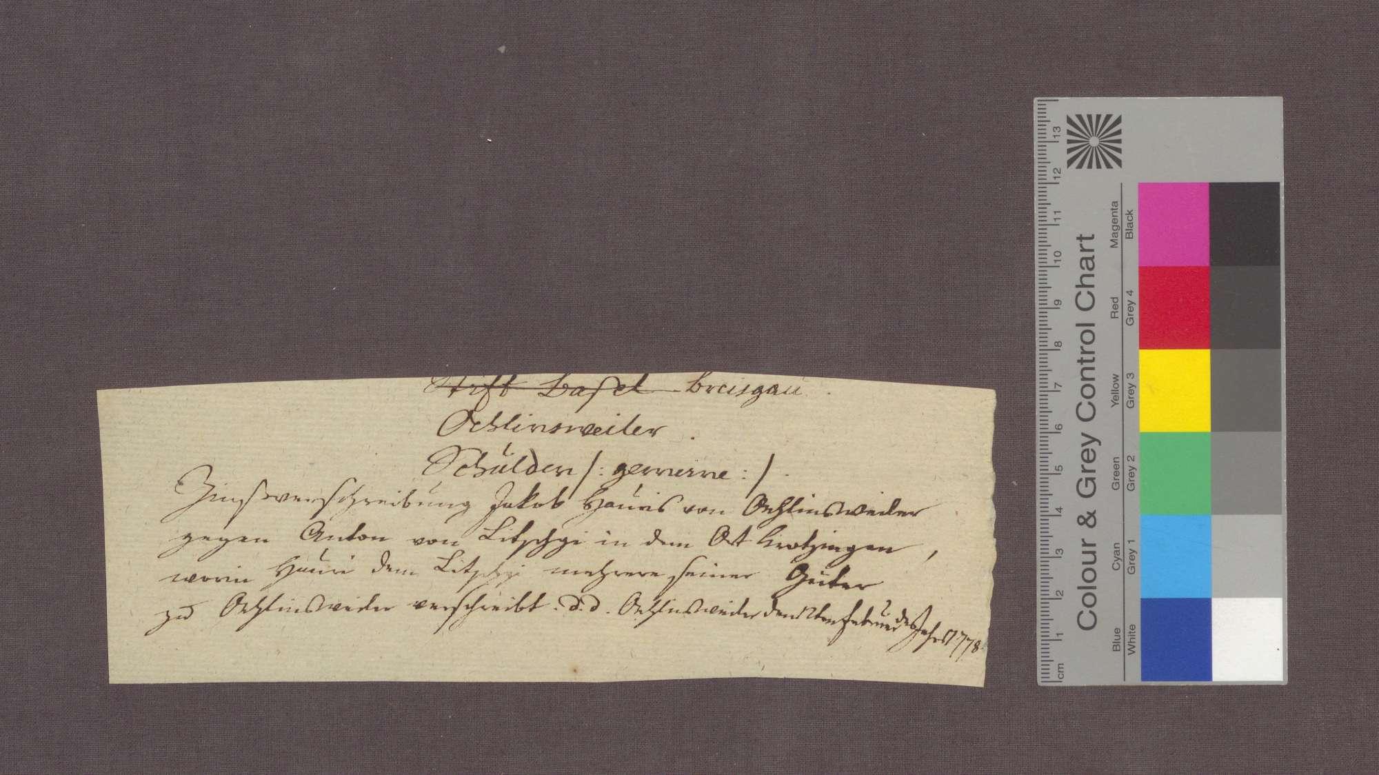 Schuldverschreibung des Jakob Hauri von Öhlinsweiler gegenüber Anton von Litschgi zu Krozingen., Bild 3