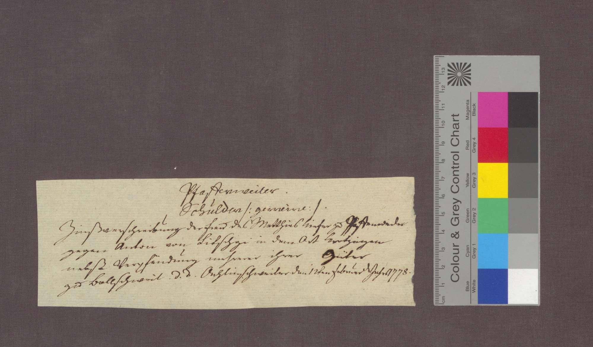 Schuldverschreibung der Witwe des Matthias Kiefer von Pfaffenweiler gegenüber Anton von Litschgi in Krozingen., Bild 3