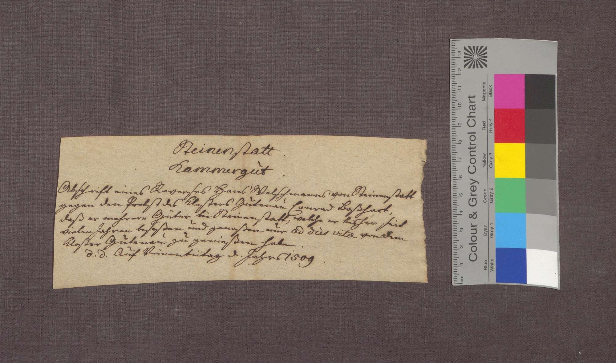 Hans Welchemann zu Steinenstadt bekennt, das Kloster Gutnau habe ihm Güter, die er seint langem genutzt hat und die Eigentum des Klosters sind, zu lebenslanger Nutznießung überlassen., Bild 3