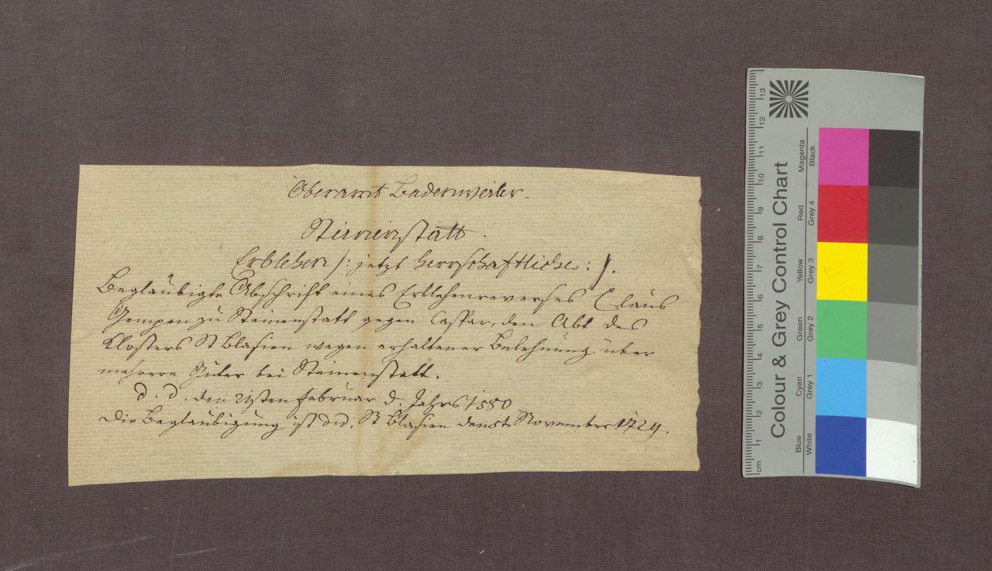 Lehnrevers des Klaus Ganz zu Steinenstadt gegenüber der Abtei St. Blasien., Bild 3
