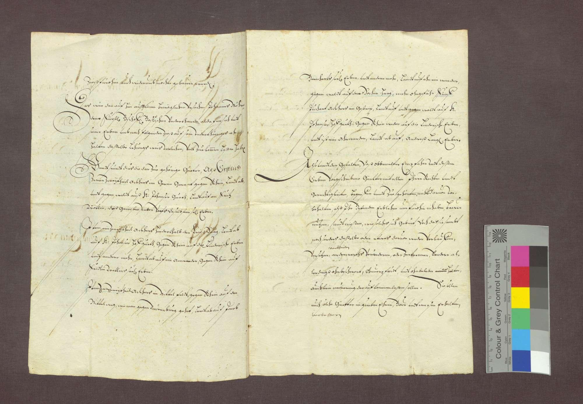 Lehnrevers des Johann Mähre zu Steinenstadt gegenüber dem Basler Domkapitel., Bild 2