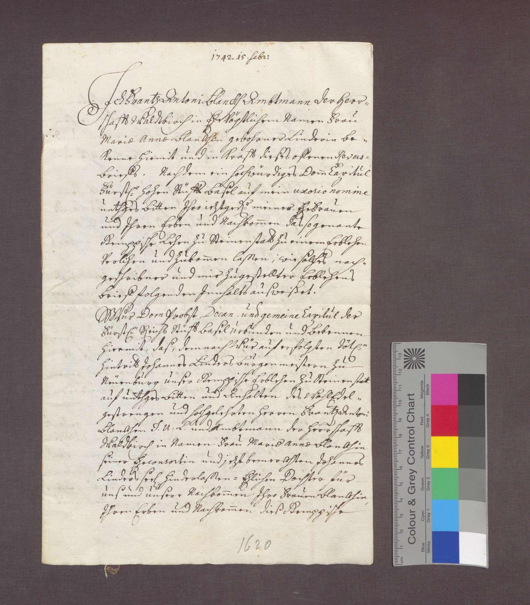 Lehnrevers des Franz Anton Blanck gegenüber dem Basler Domkapitel über ein Gut zu Steinenstadt., Bild 1