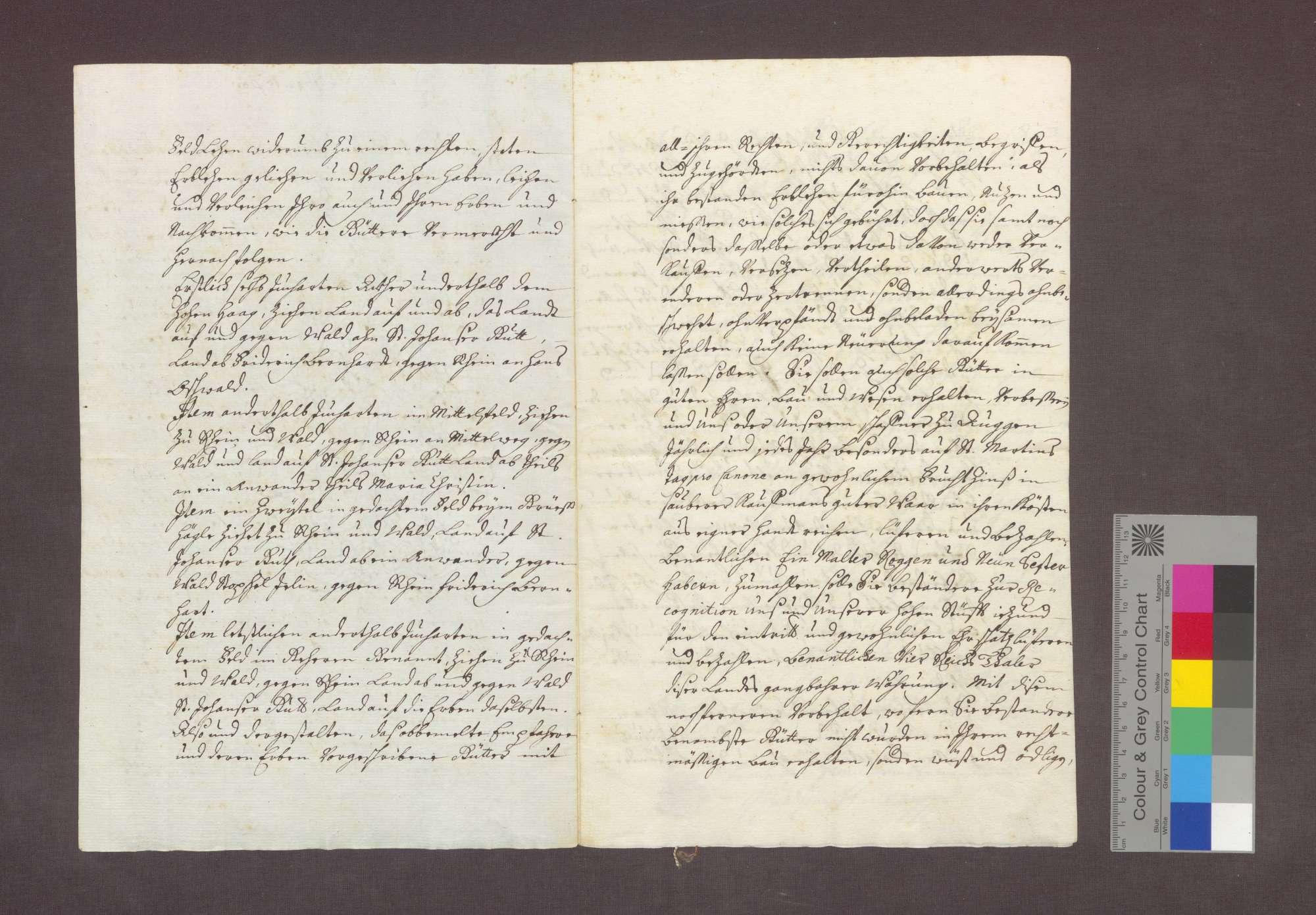 Lehnrevers des Franz Anton Blanck gegenüber dem Basler Domkapitel über ein Gut zu Steinenstadt., Bild 2