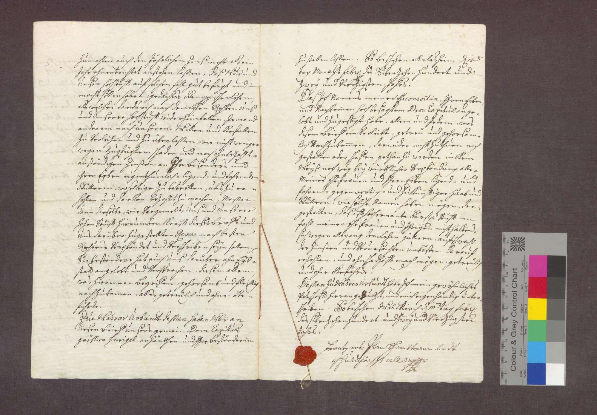 Lehnrevers des Franz Anton Blanck gegenüber dem Basler Domkapitel über ein Gut zu Steinenstadt., Bild 3