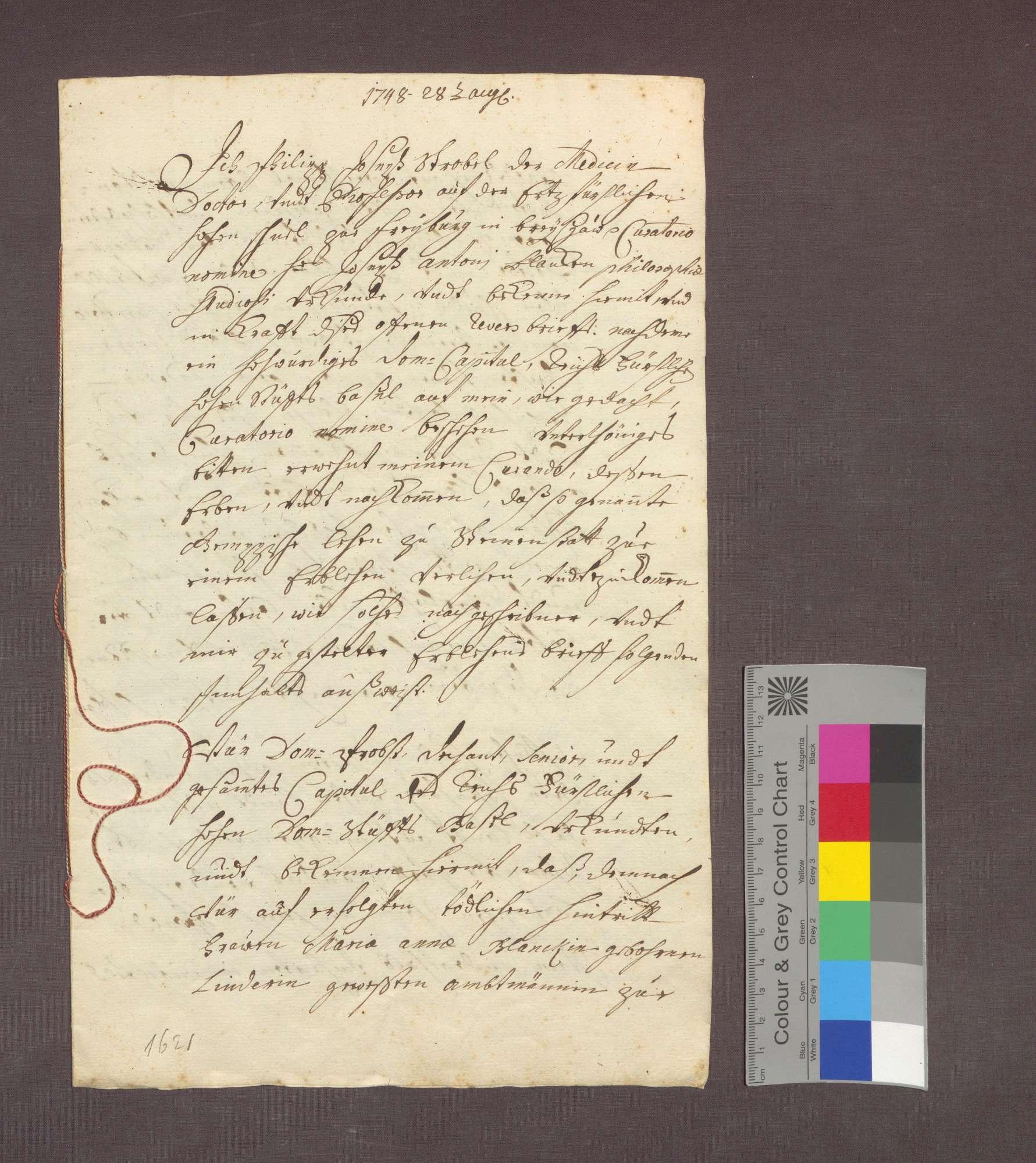 Lehnrevers des Philipp Josef Strobel namens des Josef Anton Blanck gegenüber dem Basler Domkapitel über ein Gut zu Steinenstadt., Bild 1
