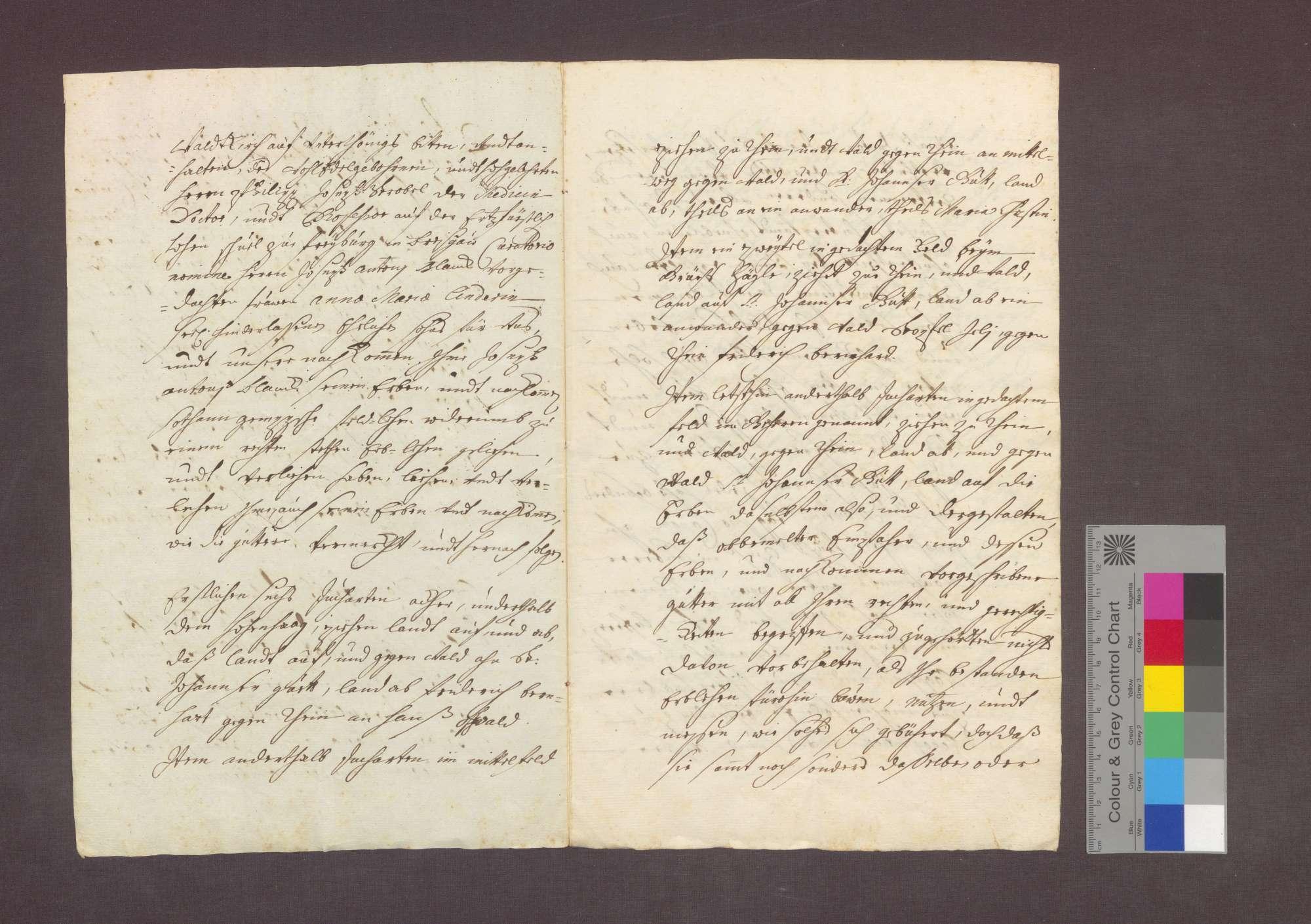 Lehnrevers des Philipp Josef Strobel namens des Josef Anton Blanck gegenüber dem Basler Domkapitel über ein Gut zu Steinenstadt., Bild 2
