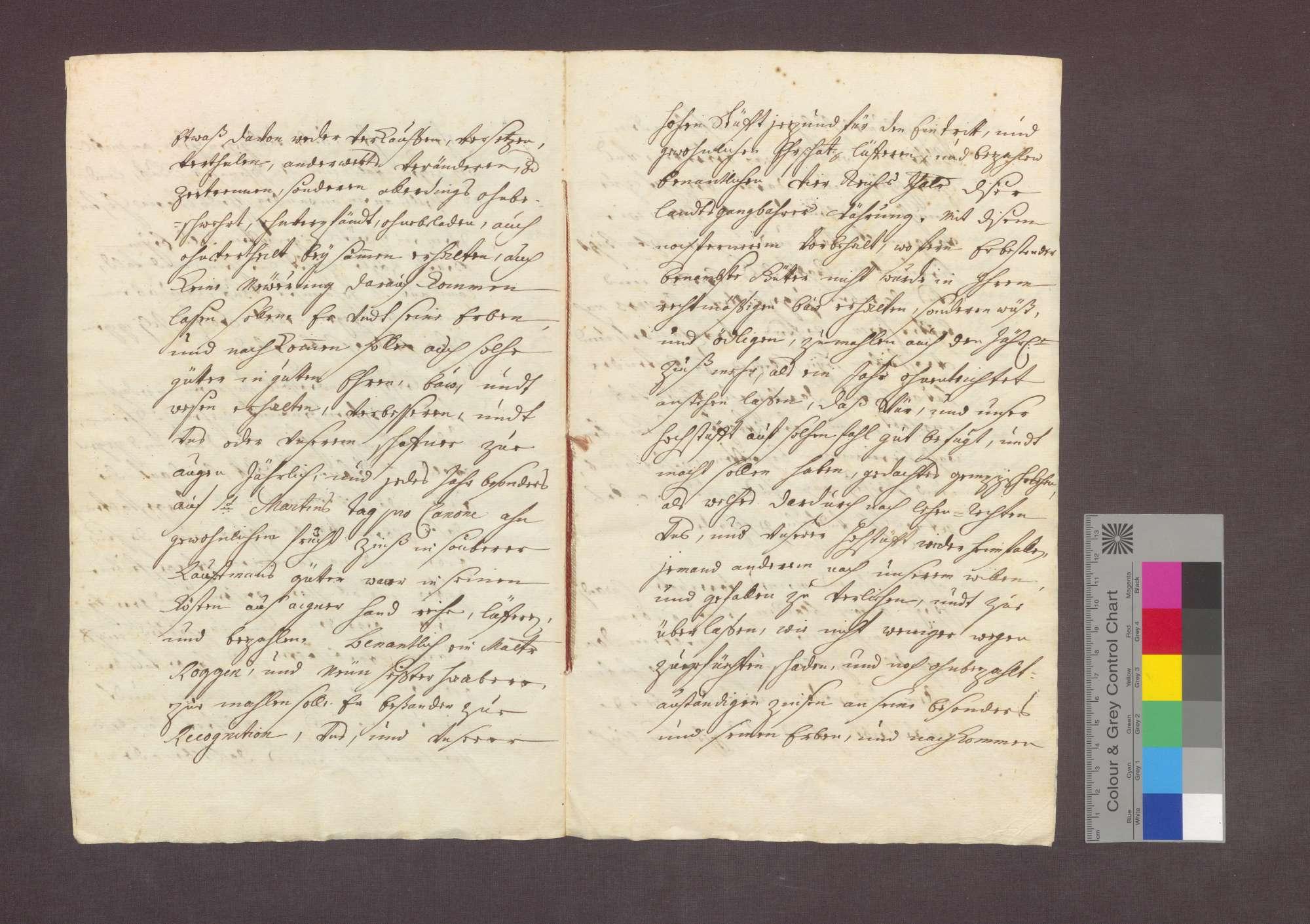 Lehnrevers des Philipp Josef Strobel namens des Josef Anton Blanck gegenüber dem Basler Domkapitel über ein Gut zu Steinenstadt., Bild 3