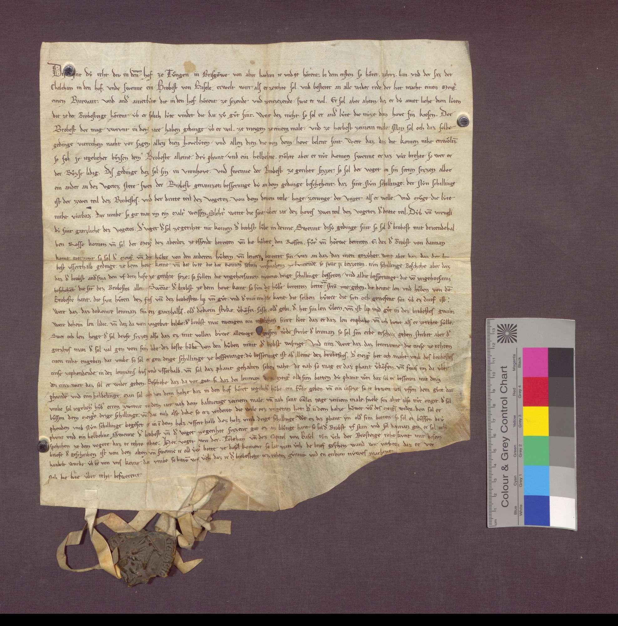 Beschreibung der Rechte des Dinghofs der Dompropstei Basel zu Tiengen., Bild 1