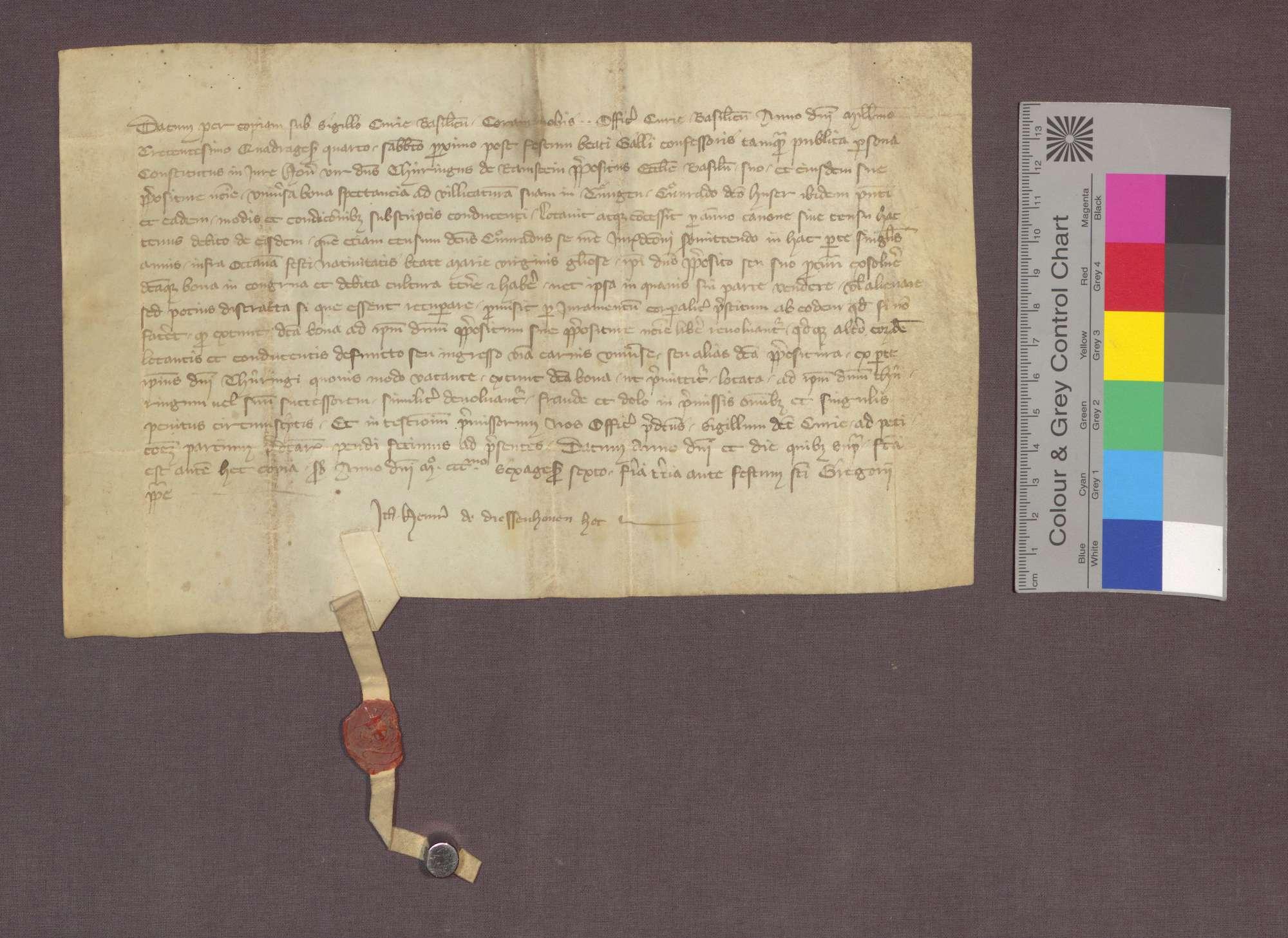 Thüring von Ramstein, Dompropst zu Basel, gibt alle seine Güter zu Tiengen dem Konrad gen .Huser in Bestand., Bild 1