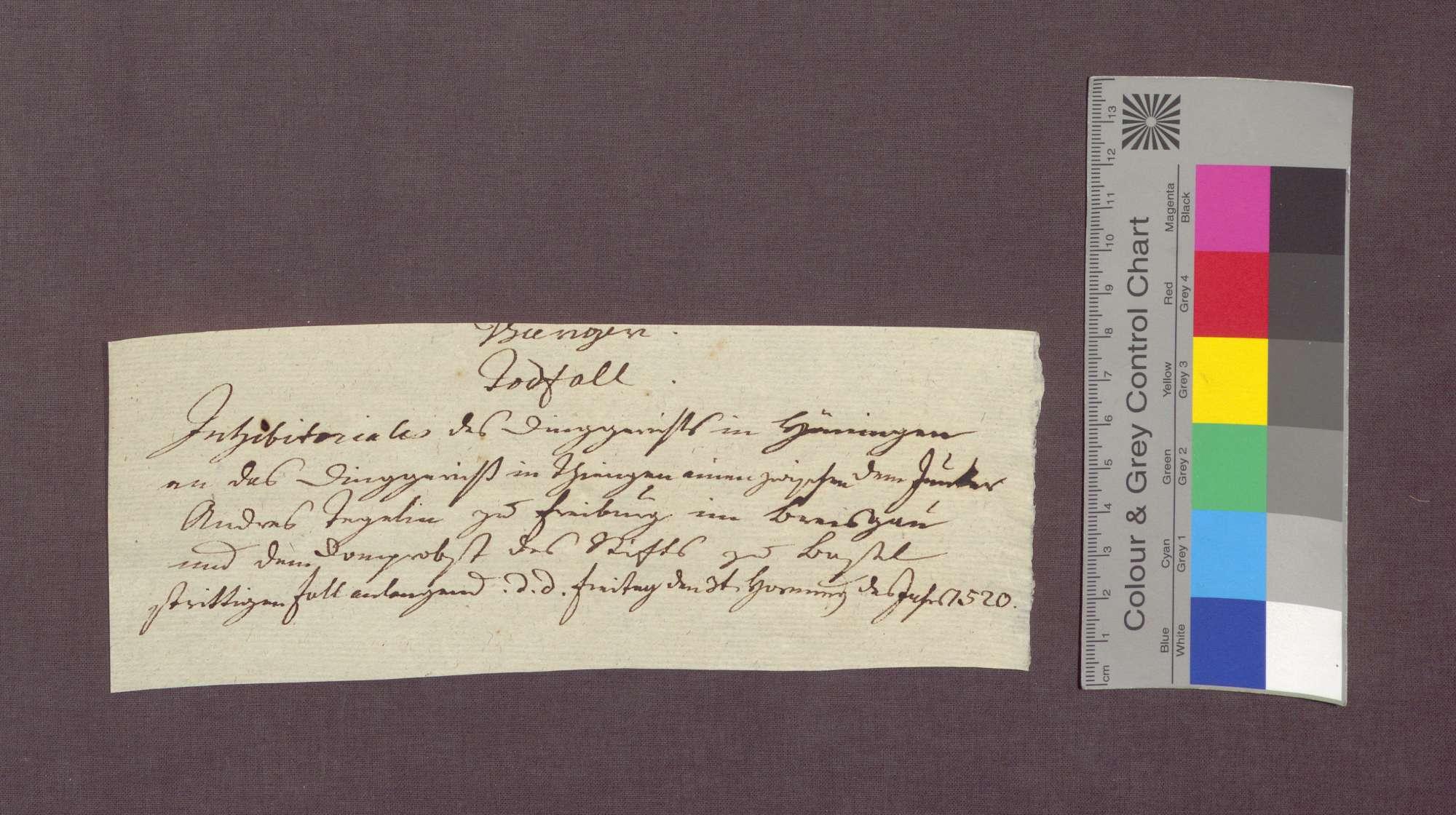 Das Gericht zu Hüningen verbietet dem Gericht zu Tiengen, in der Streitsache Andres Tegelins gegen die Basler Dompropstei wegen eines Falls, weitere Maßnahmen zu treffen., Bild 3