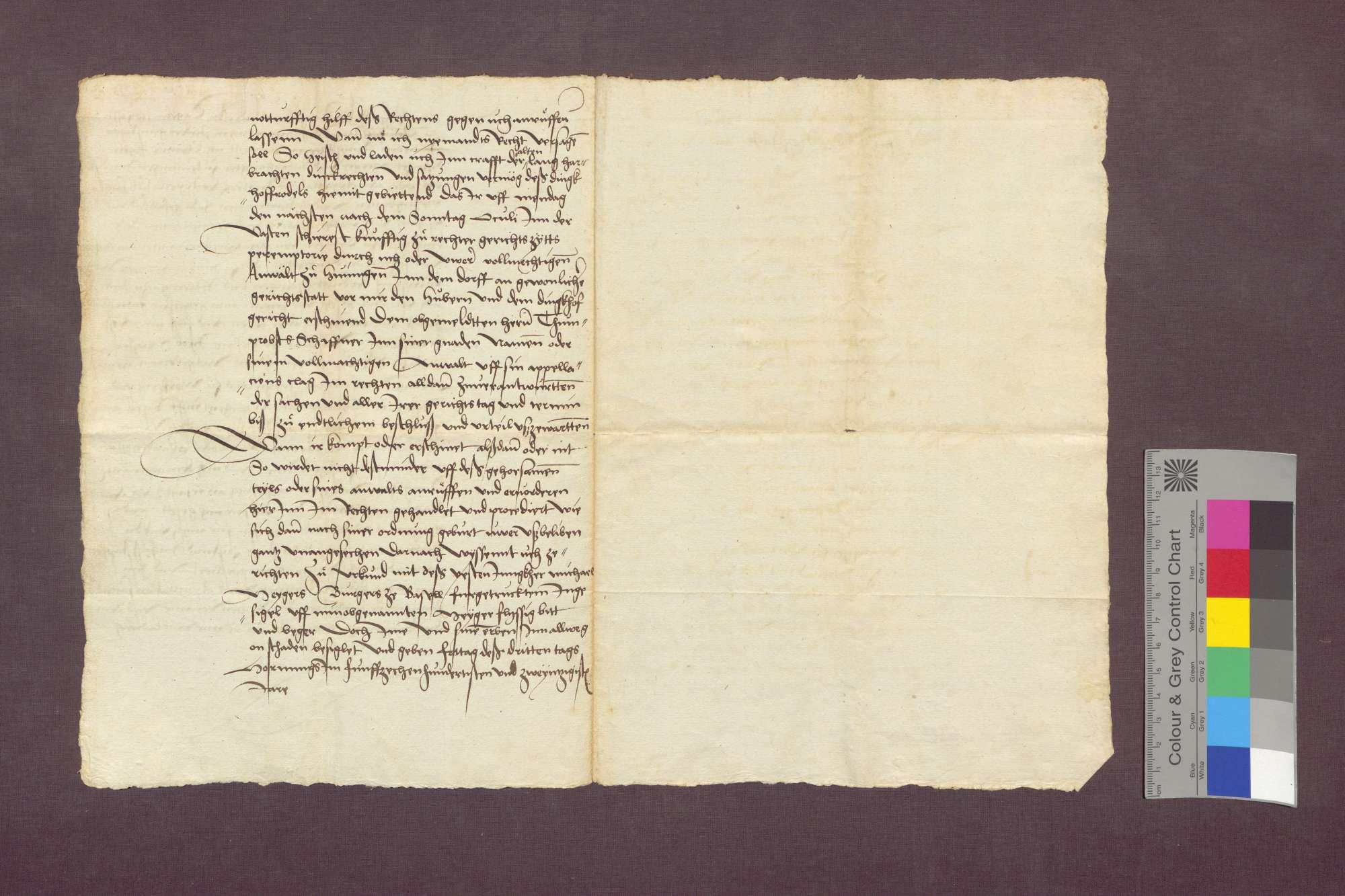 Clewi Egeli, Meier zu Hüningen, lädt den Andres Tegelin in einem Prozess mit der Basler Dompropstei wegen Todfalls vor sein Gericht., Bild 2