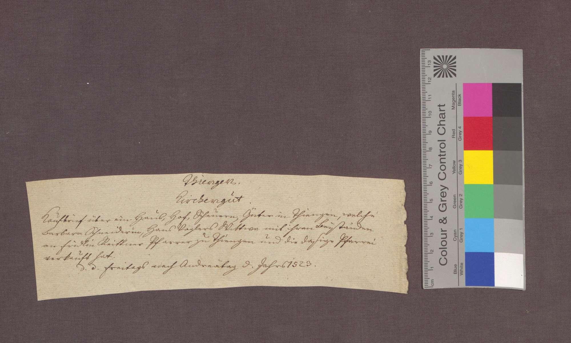 Barbara Schynderin von Tiengen verkauft Güter an die Pfarrei daselbst., Bild 3