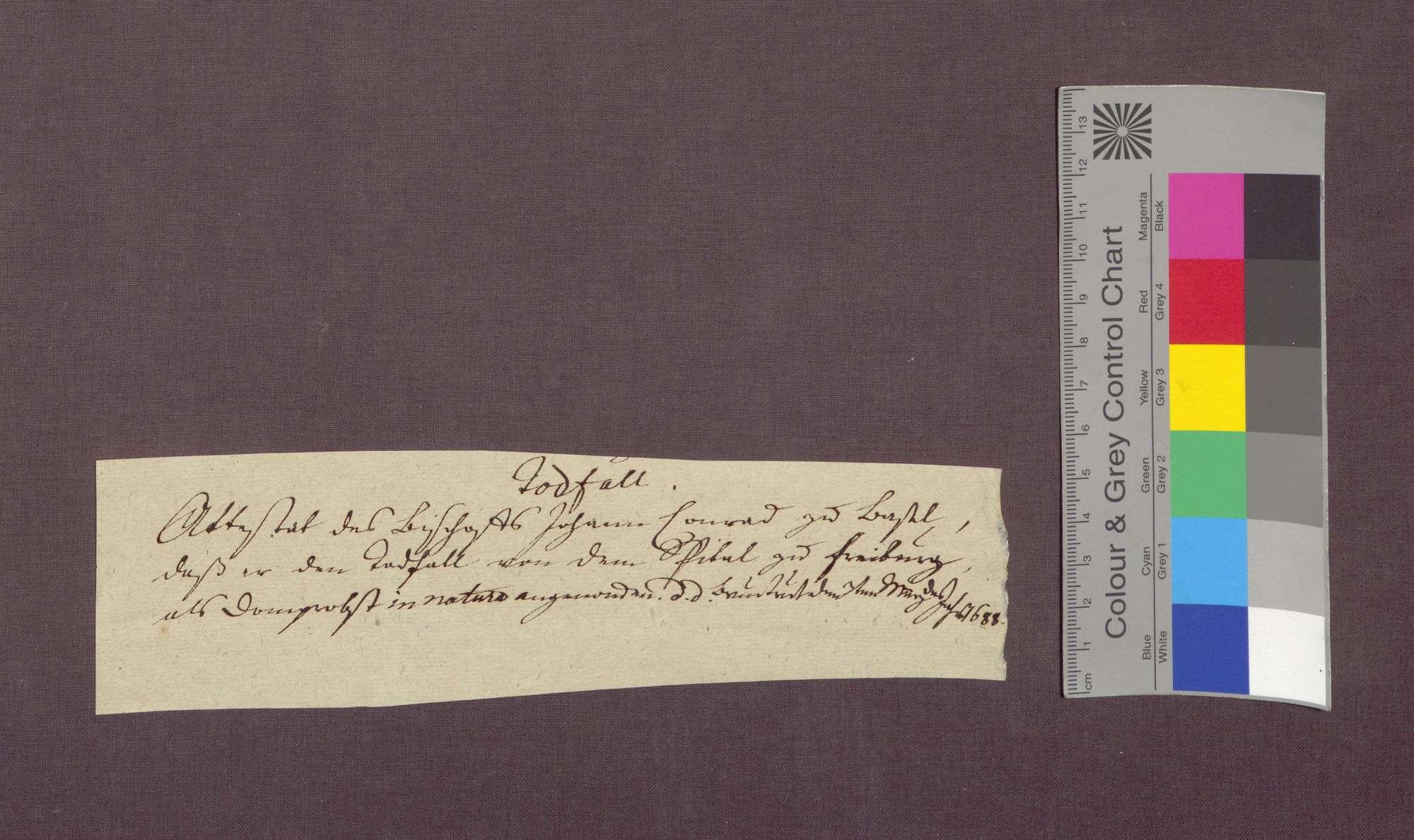 Der Basler Bischof Johann Konrad von Roggenbach bescheinigt dem Dompropst, er habe als Dompropst von dem Spital in Freiburg den Fall in Tiengen in natura genommen., Bild 2