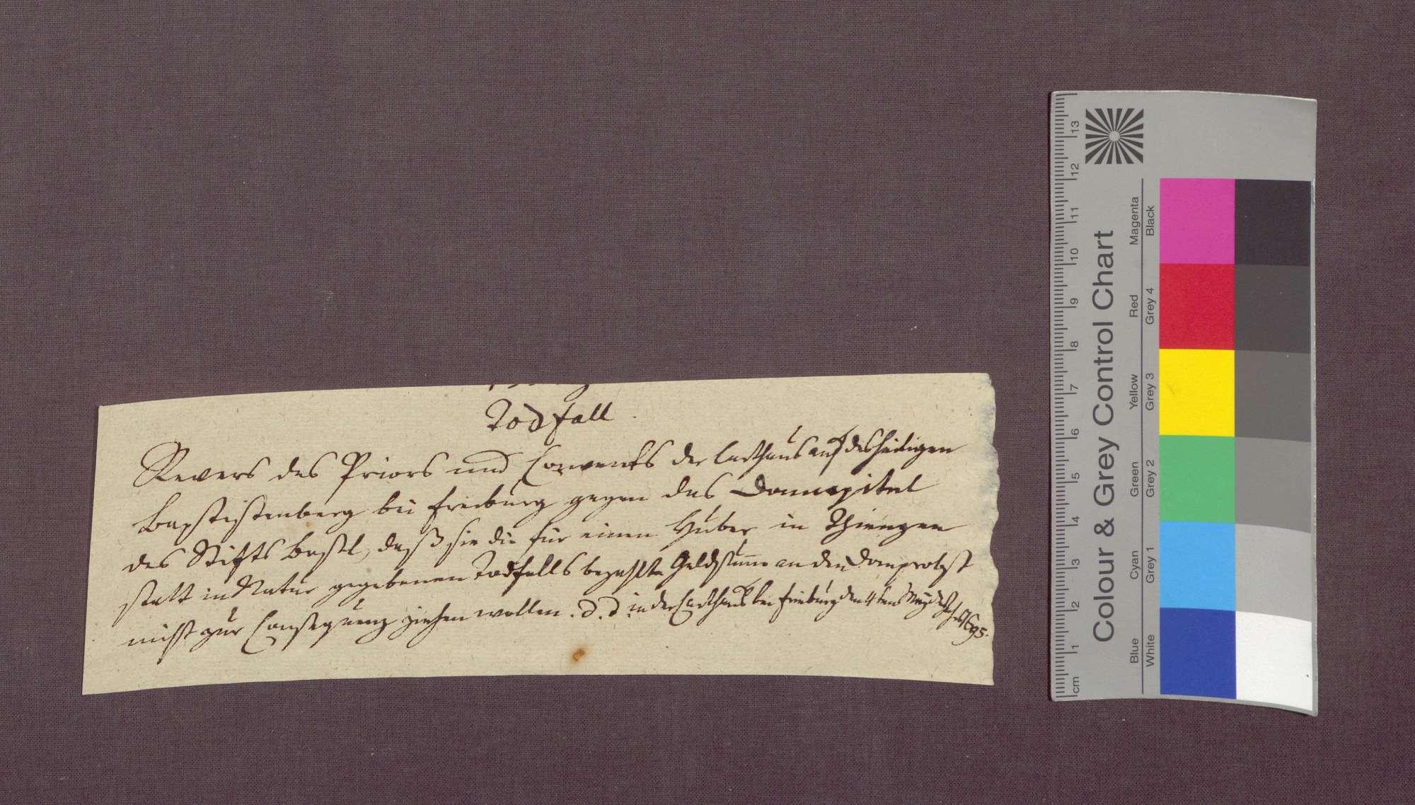 Revers der Kartäuser zu Freiburg gegenüber der Basler Dompropstei wegen des Hauptfalls zu Tiengen., Bild 2