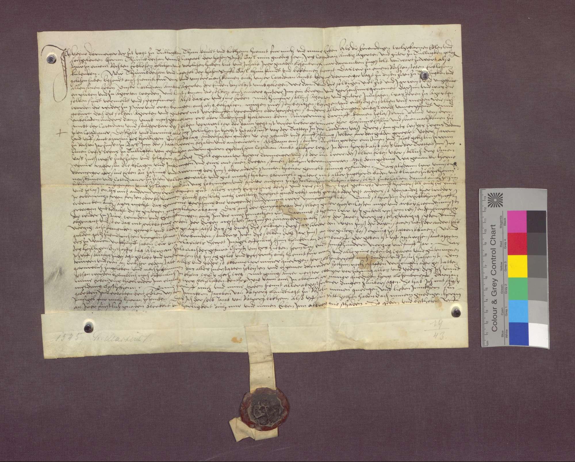 Lehnrevers des Hegen Dörmeiger, Vogts zu Tüllingen, gegenüber der Cotidian in Basel., Bild 1