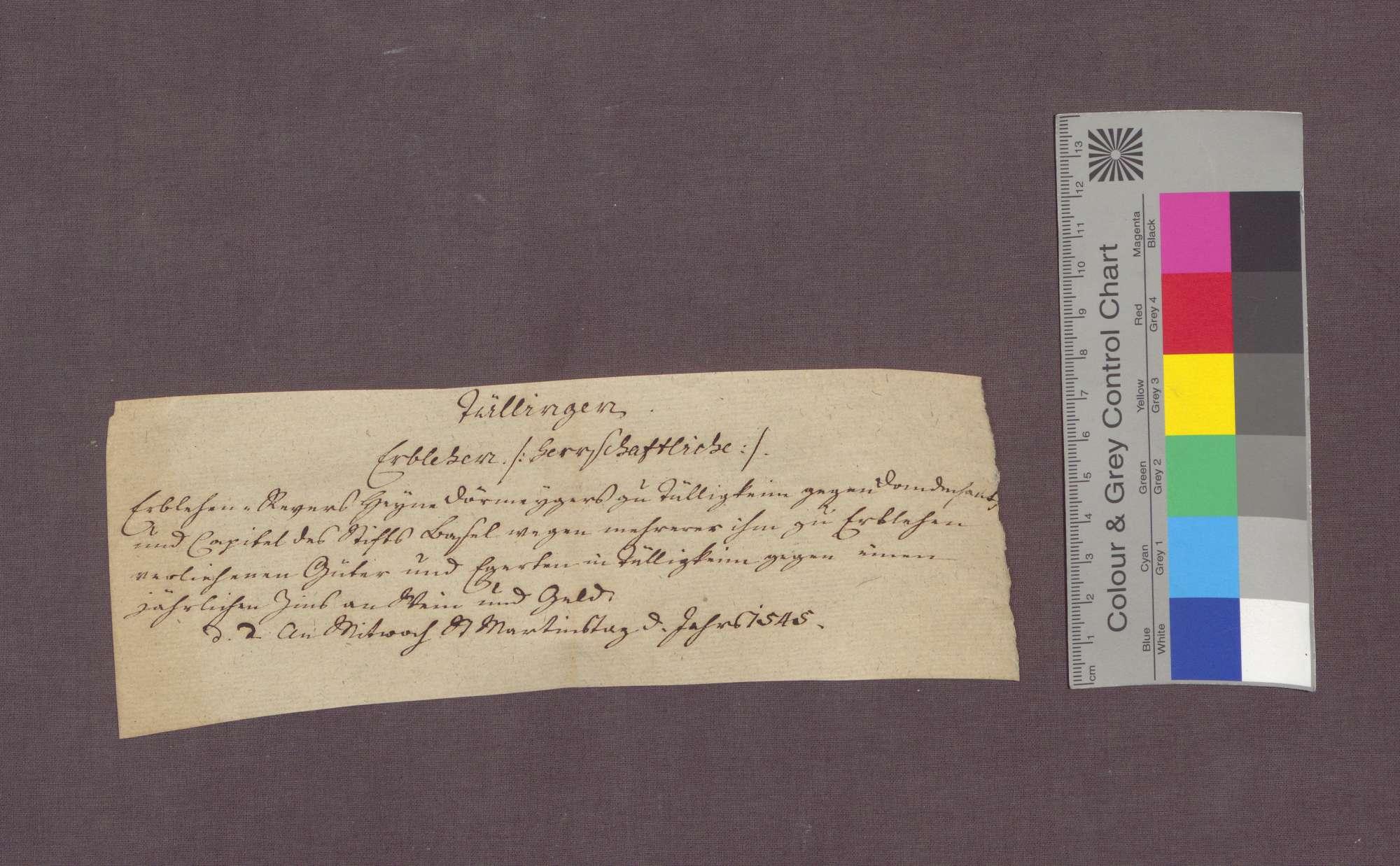 Lehnrevers des Hegen Dörmeiger, Vogts zu Tüllingen, gegenüber der Cotidian in Basel., Bild 3