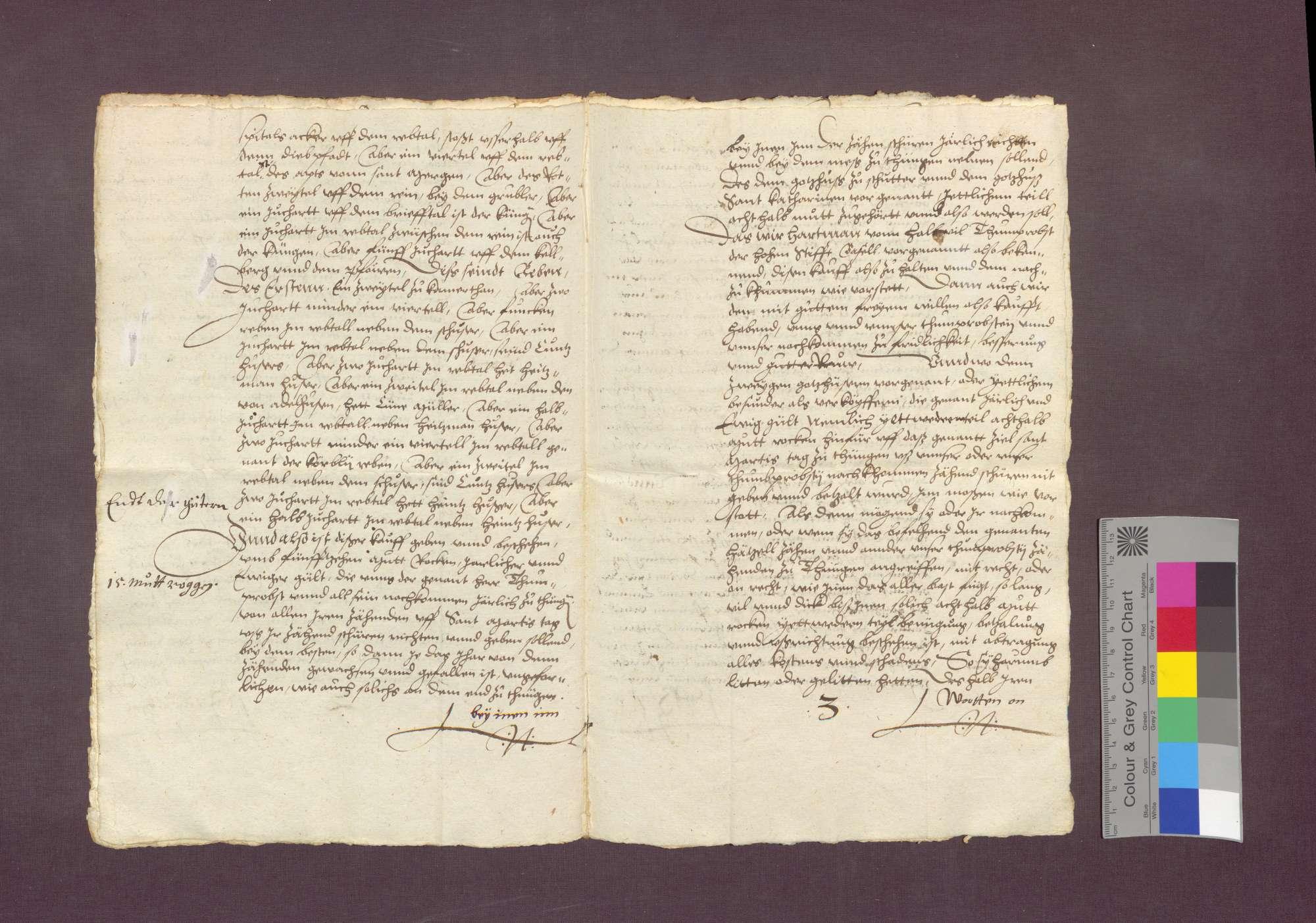 Das Kloster Schuttern und das Kloster St. Katharina in Freiburg verkaufen den Hetzelzehnt zu Tiengen an die Basler Domprostei., Bild 3
