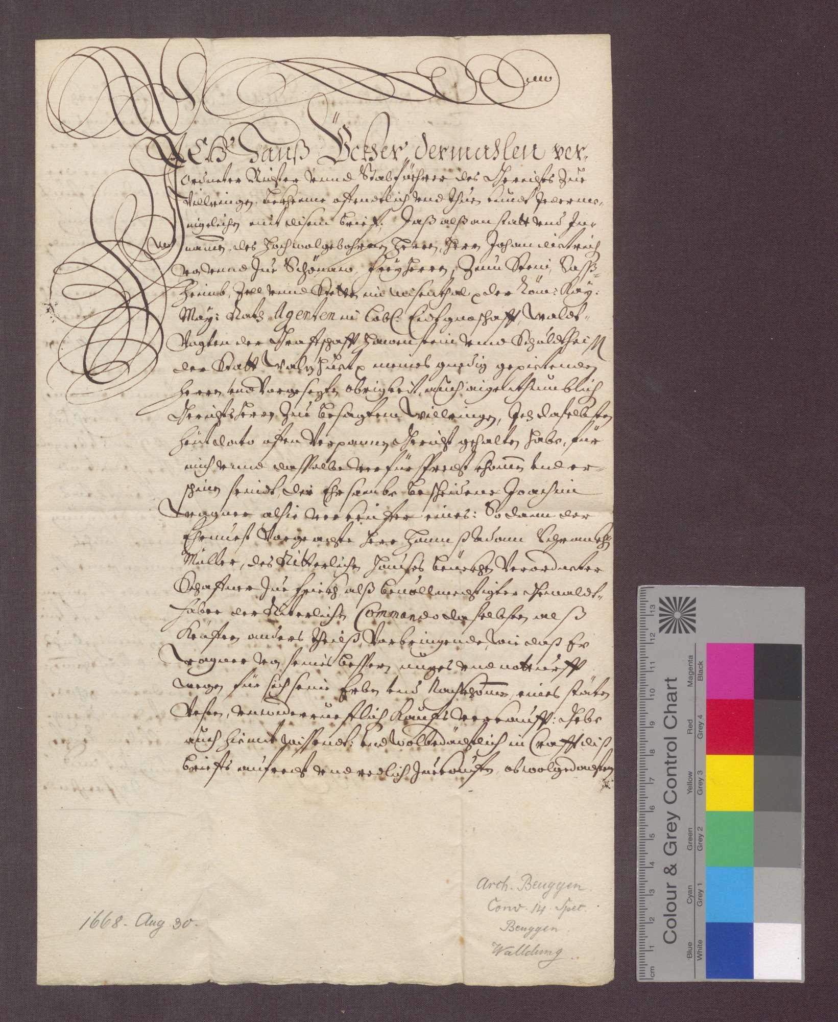 Joachim Wagner zu Willaringen verkauft der Deutsch-Ordens-Kommende zu Beuggen ein Stück Tannenwald um 50 Gulden., Bild 1