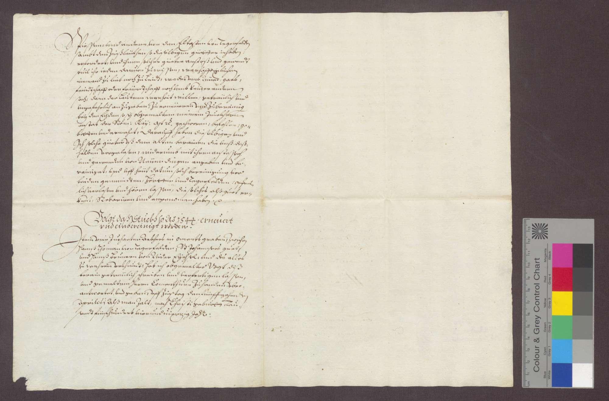 Auszug aus dem erneuerten Berein über die dem Johanniter-Haus zu Rheinfelden gehörigen Gefälle zu Degerfelden und Herten., Bild 2
