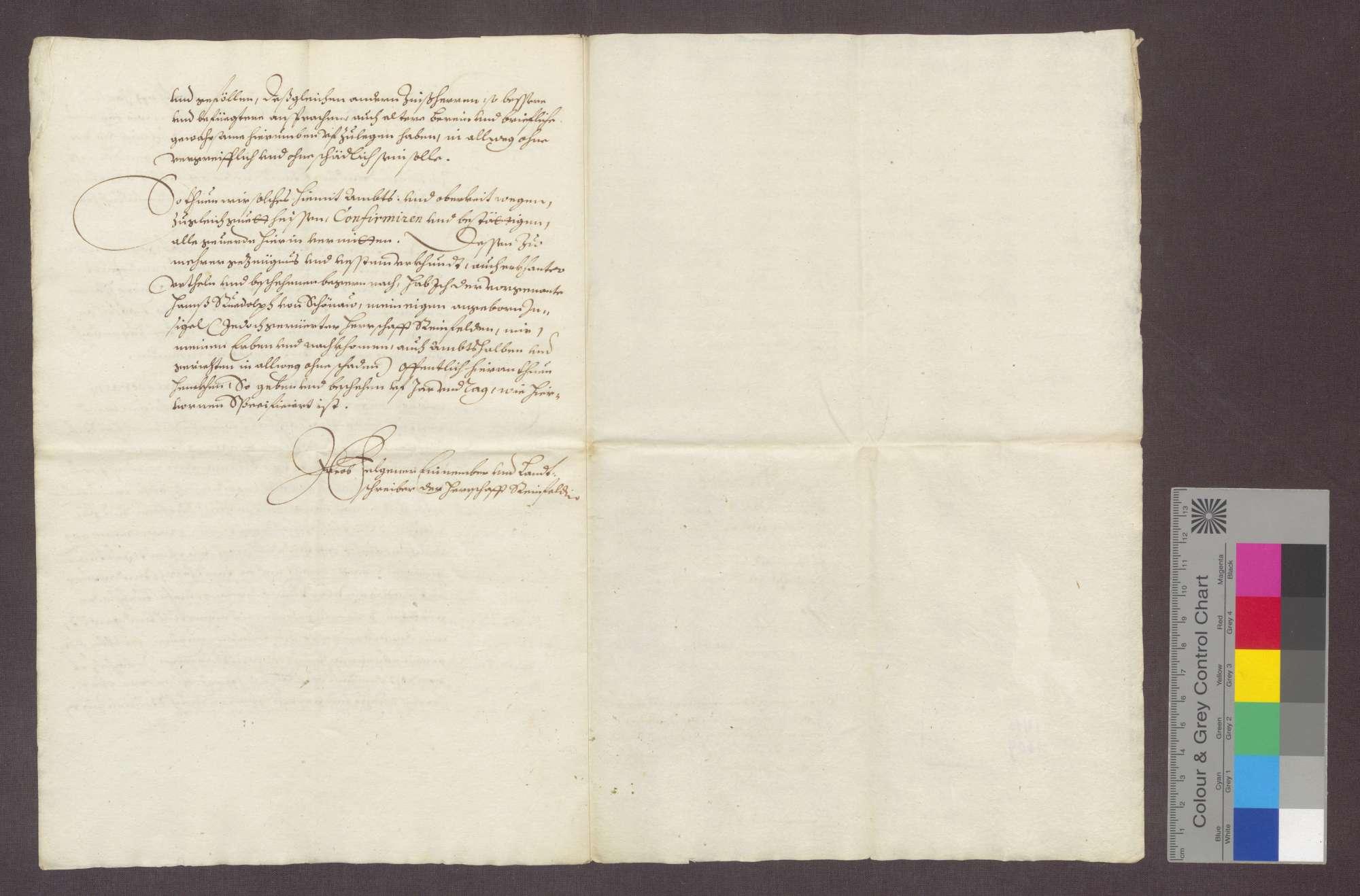 Auszug aus dem erneuerten Berein über die dem Johanniter-Haus zu Rheinfelden gehörigen Gefälle zu Degerfelden und Herten., Bild 3