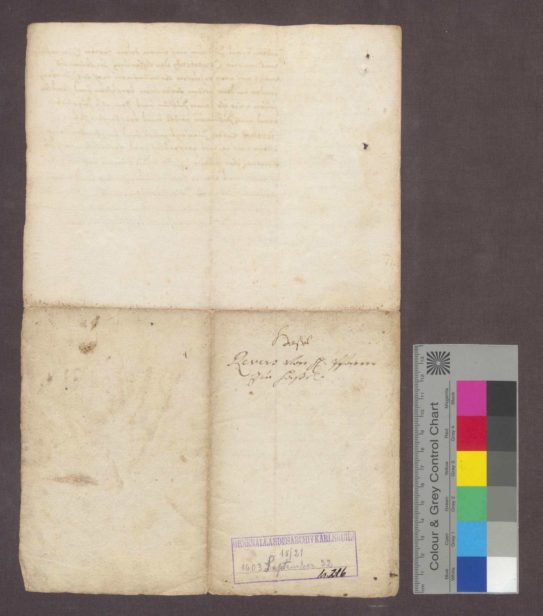 Hartmann von Hallwil, Komtur zu Beuggen, reversiert gegenüber dem zum Pfarrer in Hasel ernannten Lienhard Pistorius., Bild 3