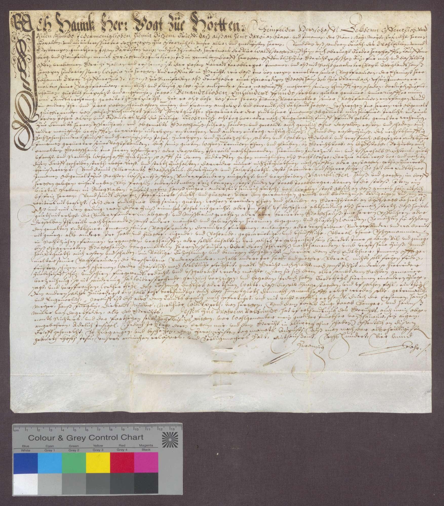 Die Witwe Hans Herzogs zu Herten verschreibt sich gegenüber der Kirche zu Warmbach wegen jährlich 5 Pfund Stebler Zins aus 100 Pfund Kapital., Bild 1