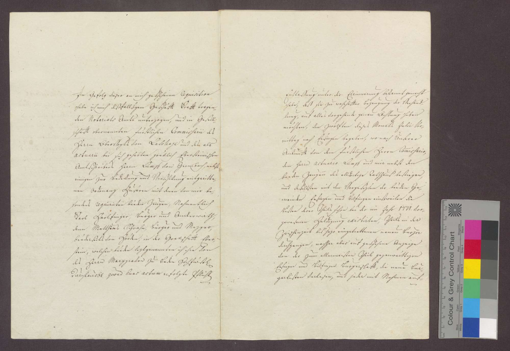Der Notar Karl Wilhelm Wieland von Karlsruhe beurkundet die Huldigungseinnahme der seit 1771 in Ersingen und Bilfingen zugezogenen Neubürger durch den markgräflich badischen Kommissar Lassolaye, Obervogt zu Gernsbach., Bild 3