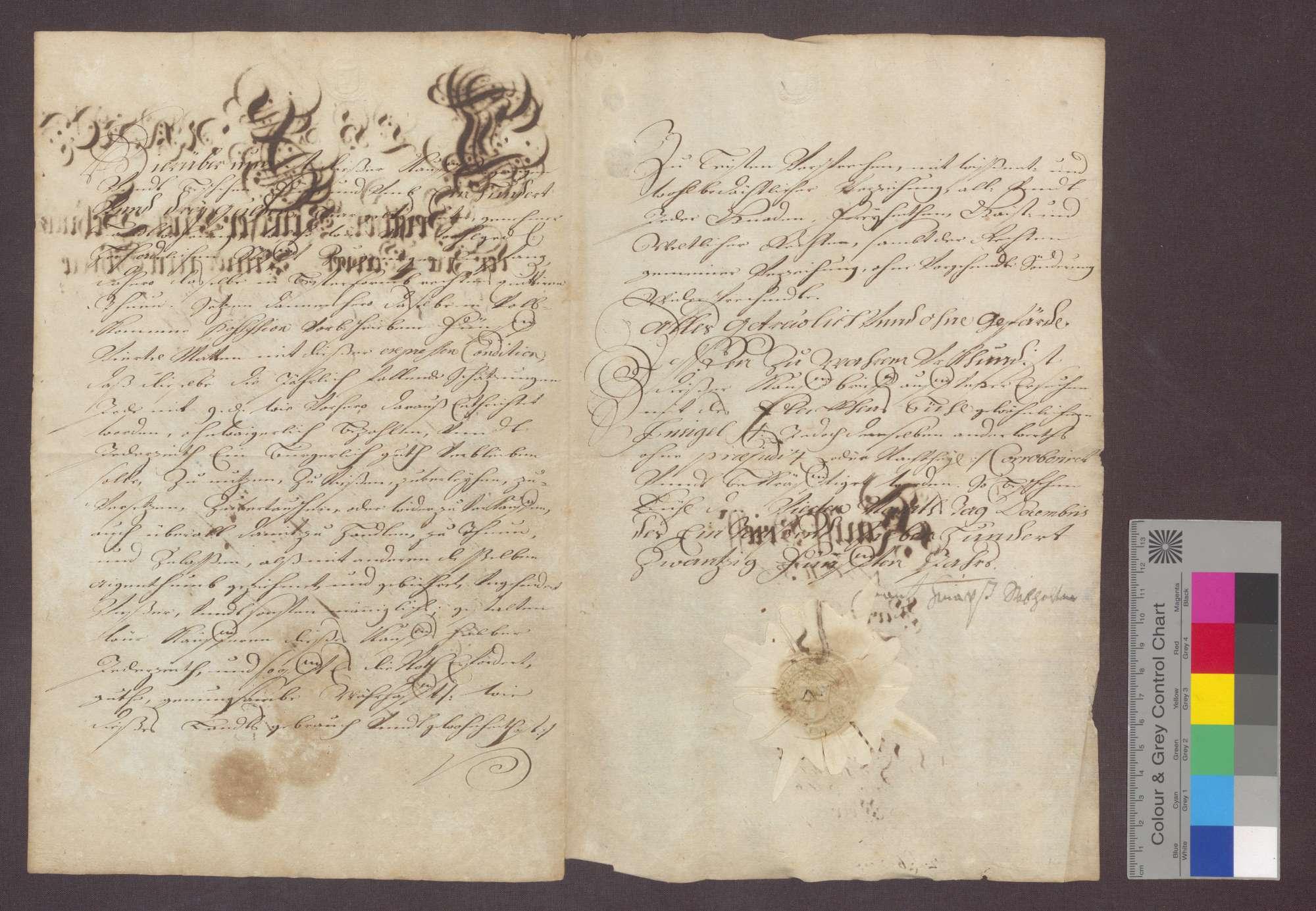 Franz Seiter, Bürger und Schneider zu Kappelwindeck verkauft dem Kloster Frauenalb um 103 Gulden 5 Viertel Matten auf der Weidmatte zu Kappel., Bild 2