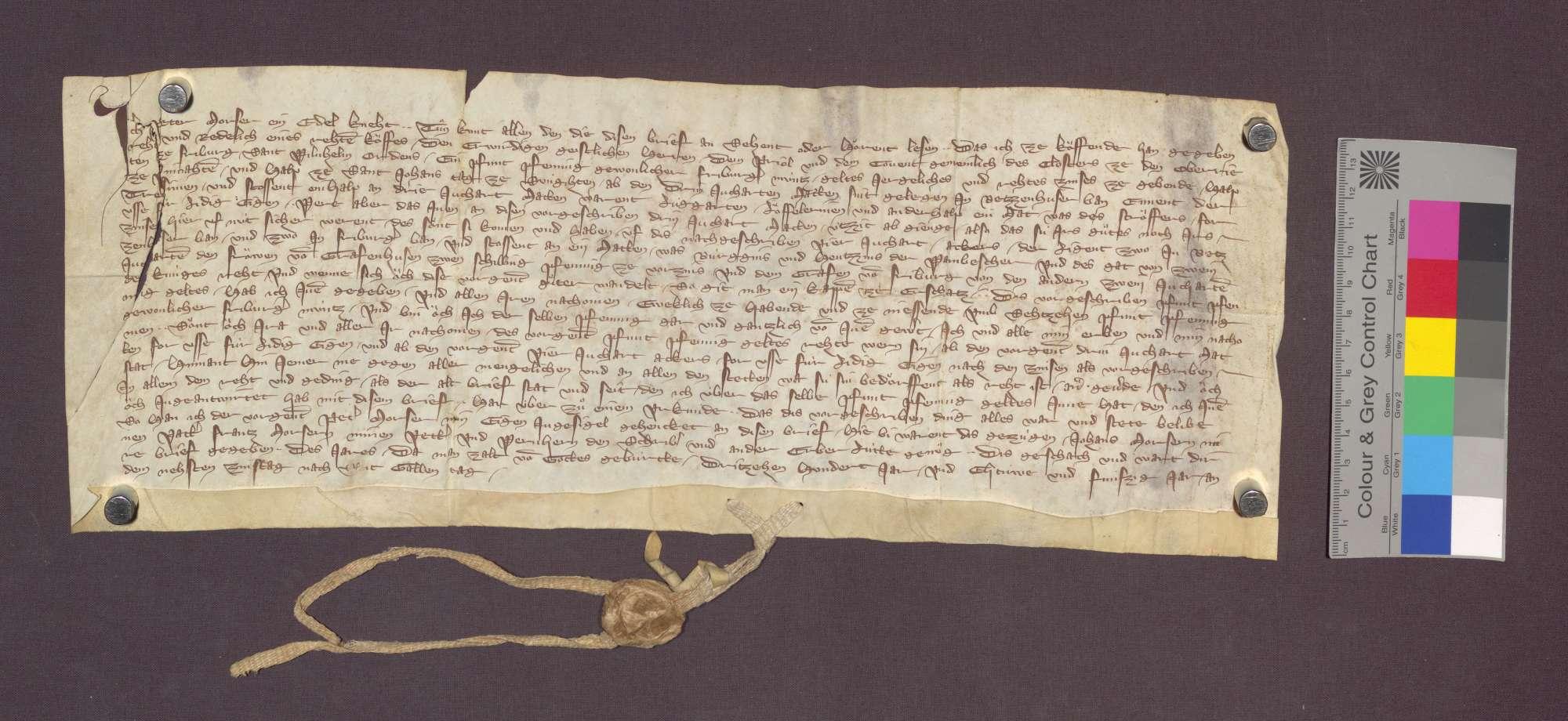 Peter Worser, Edelknecht, verkauft dem Kloster der Oberrieder zu Freiburg eine Gült von 1 Pfund Freiburger Pfennige von genannten 3 Juchert Äckern in Betzenhauser Bann um 16 Pfund Pfennige., Bild 1